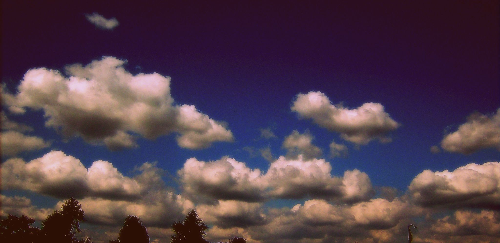 Cotton Wool Clouds by Michelle Dimascio