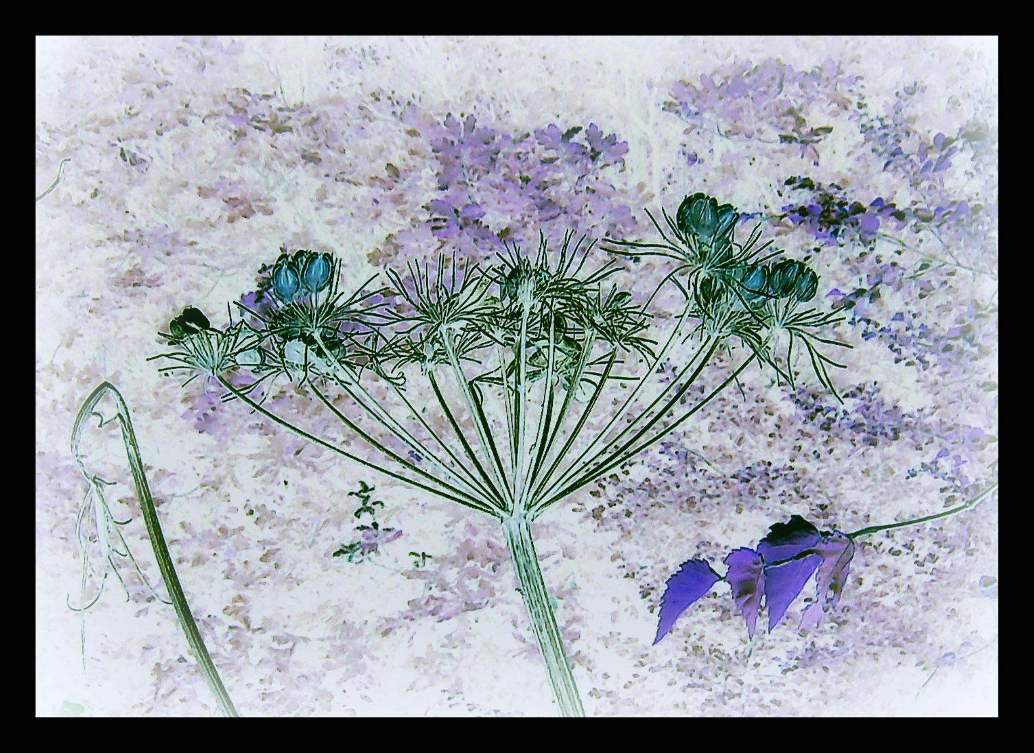 Natures Paintbrush by Michelle Dimascio
