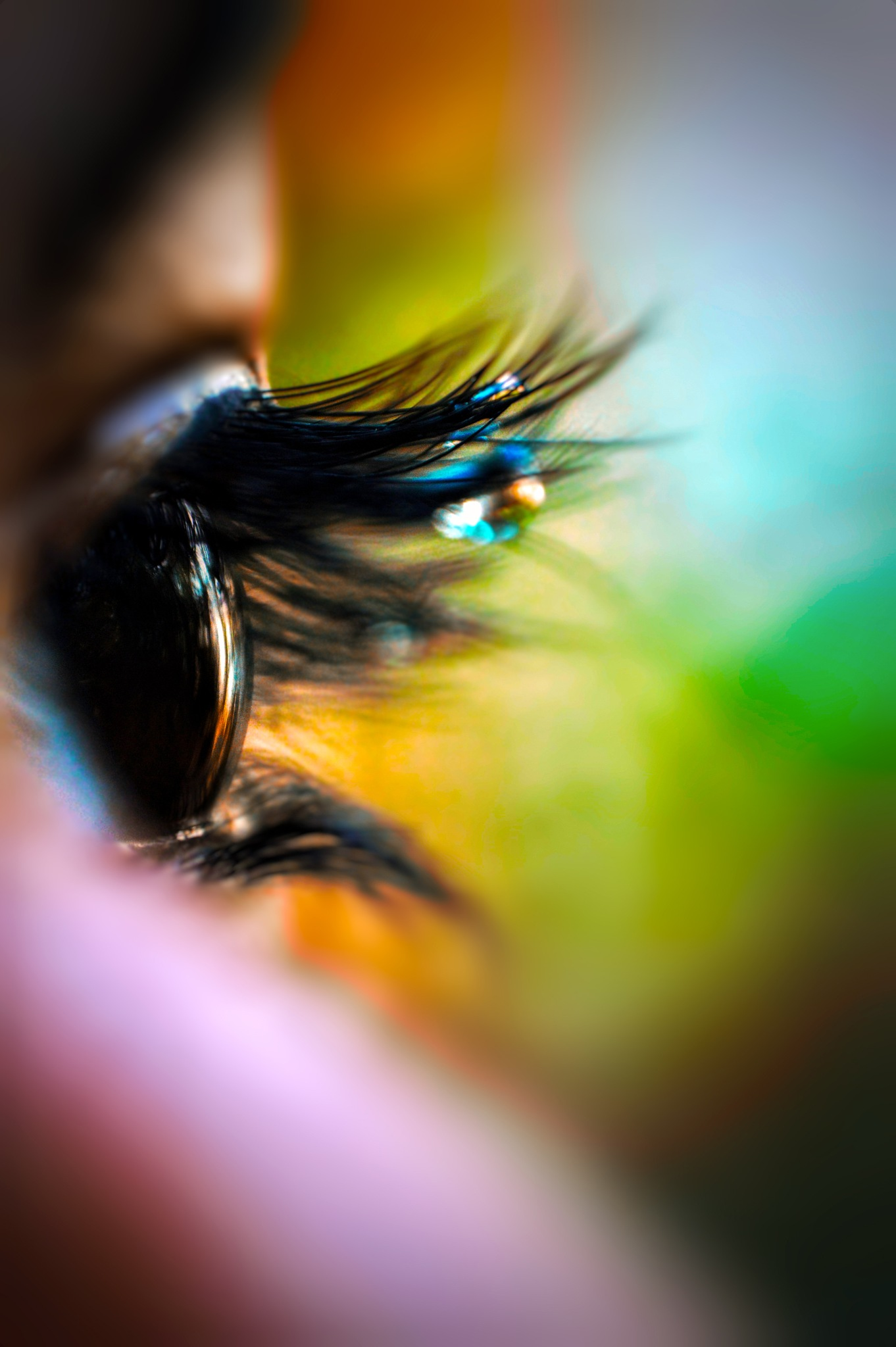 world i see by Aakash Dirar