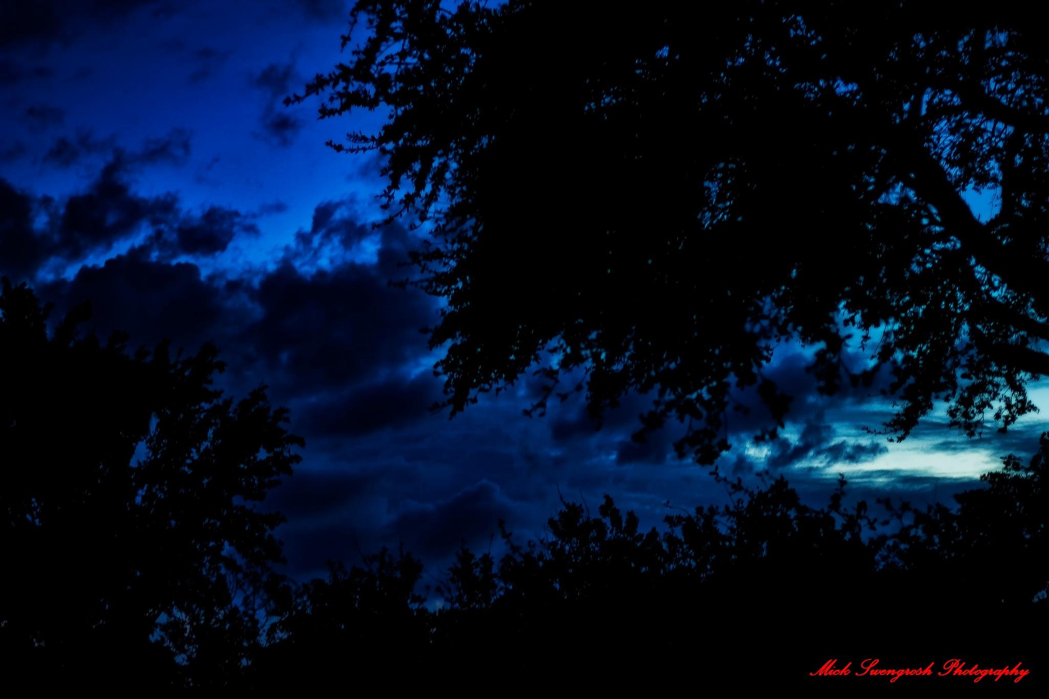 Last evenings Florida Sky by Mick Swengrosh