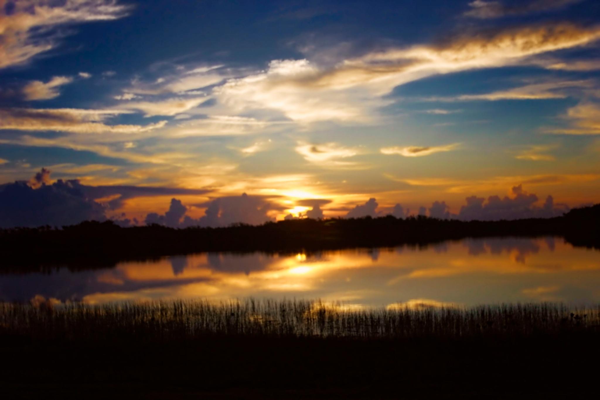 Everglades Sunrise by Mick Swengrosh