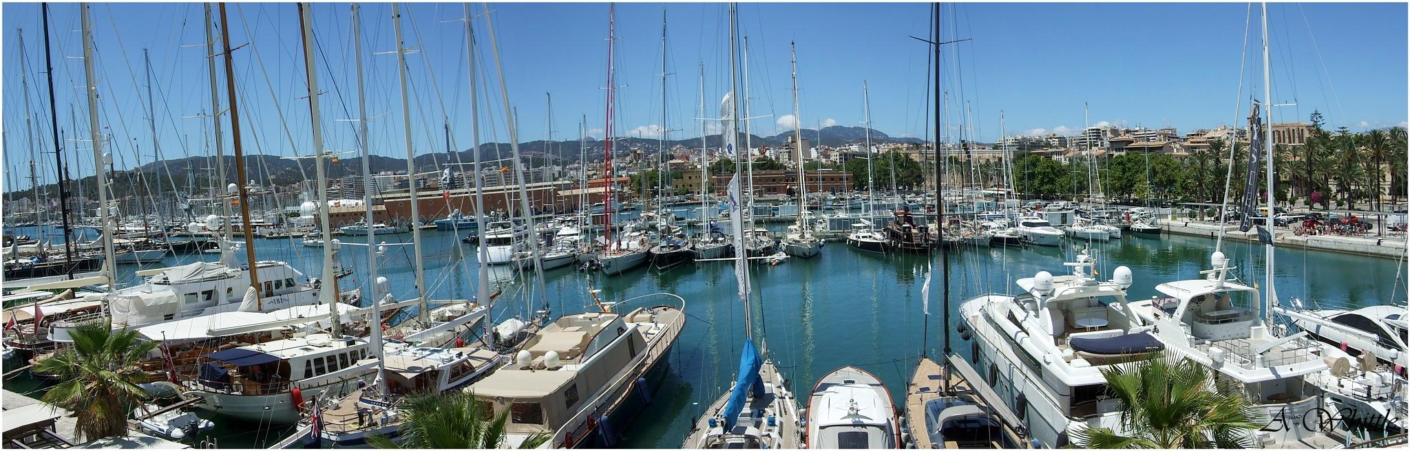 Marina Port de Mallorca by Andy Whittle
