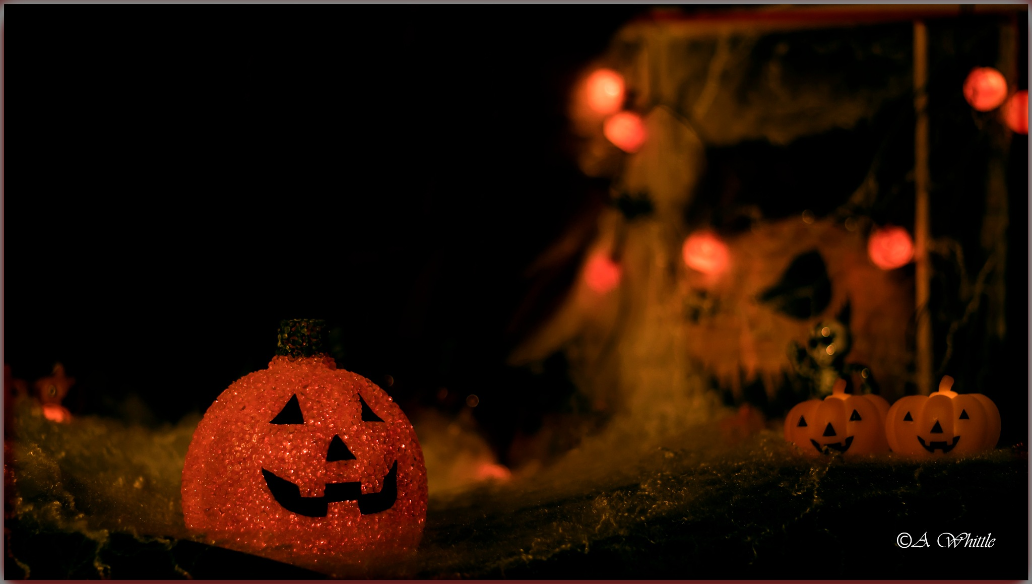 Pumpkin by Andy Whittle