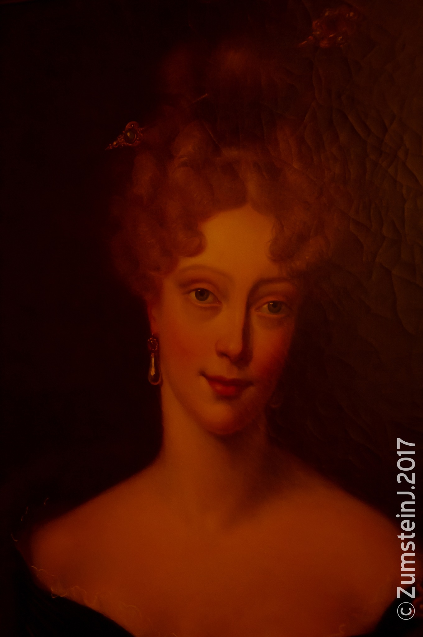La comtesse Du Barry by Zumstein Jacqui