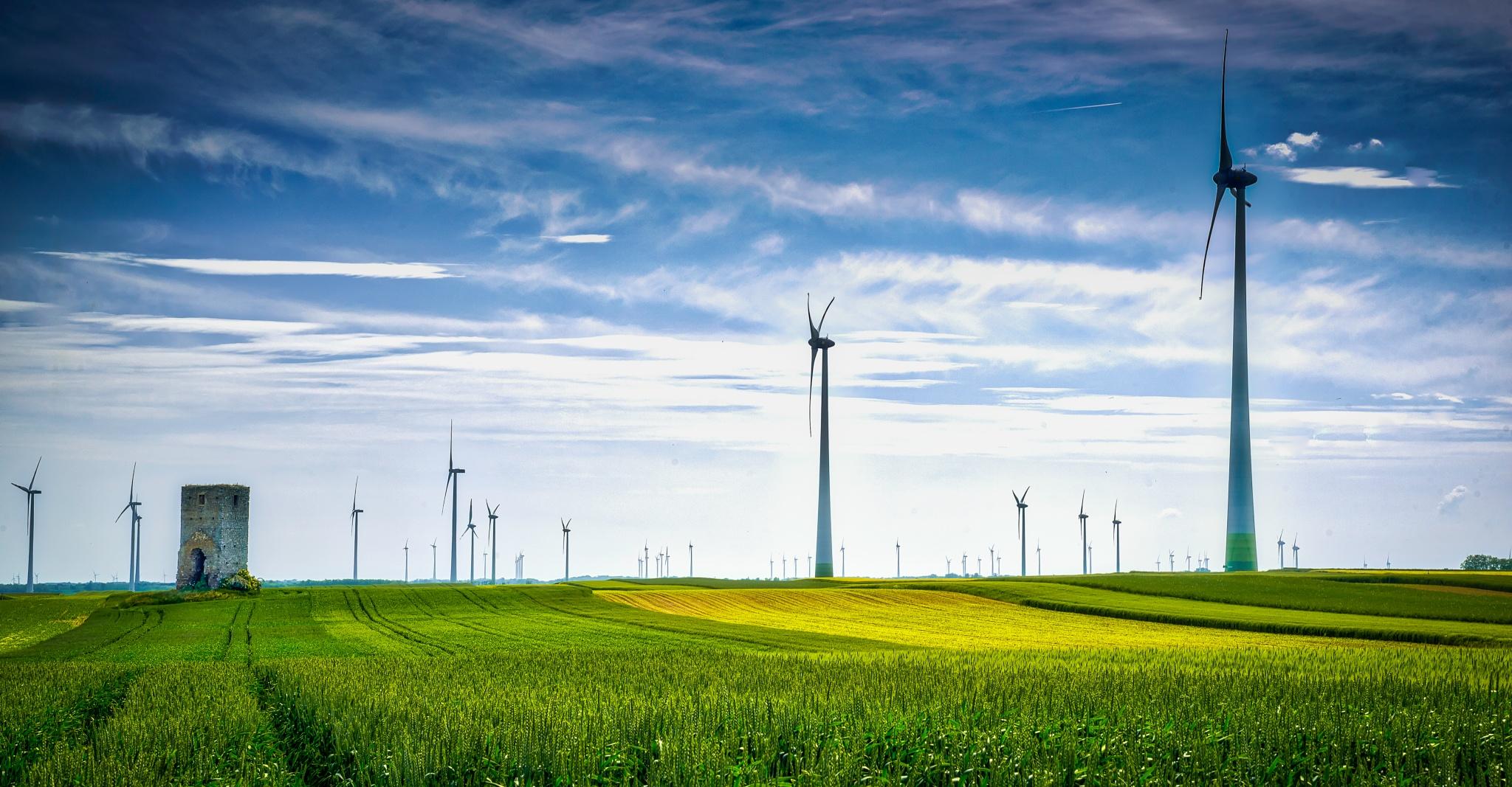 Power field by JurajNovak