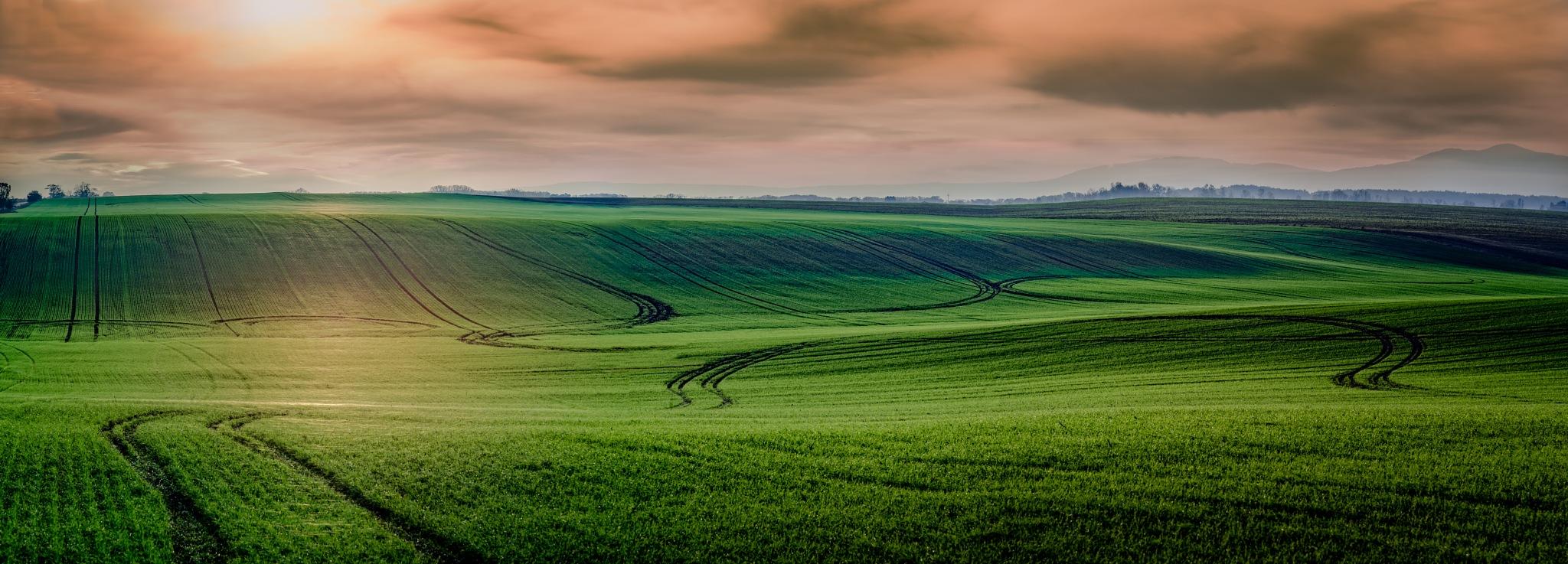 Fields in sunshine by JurajNovak