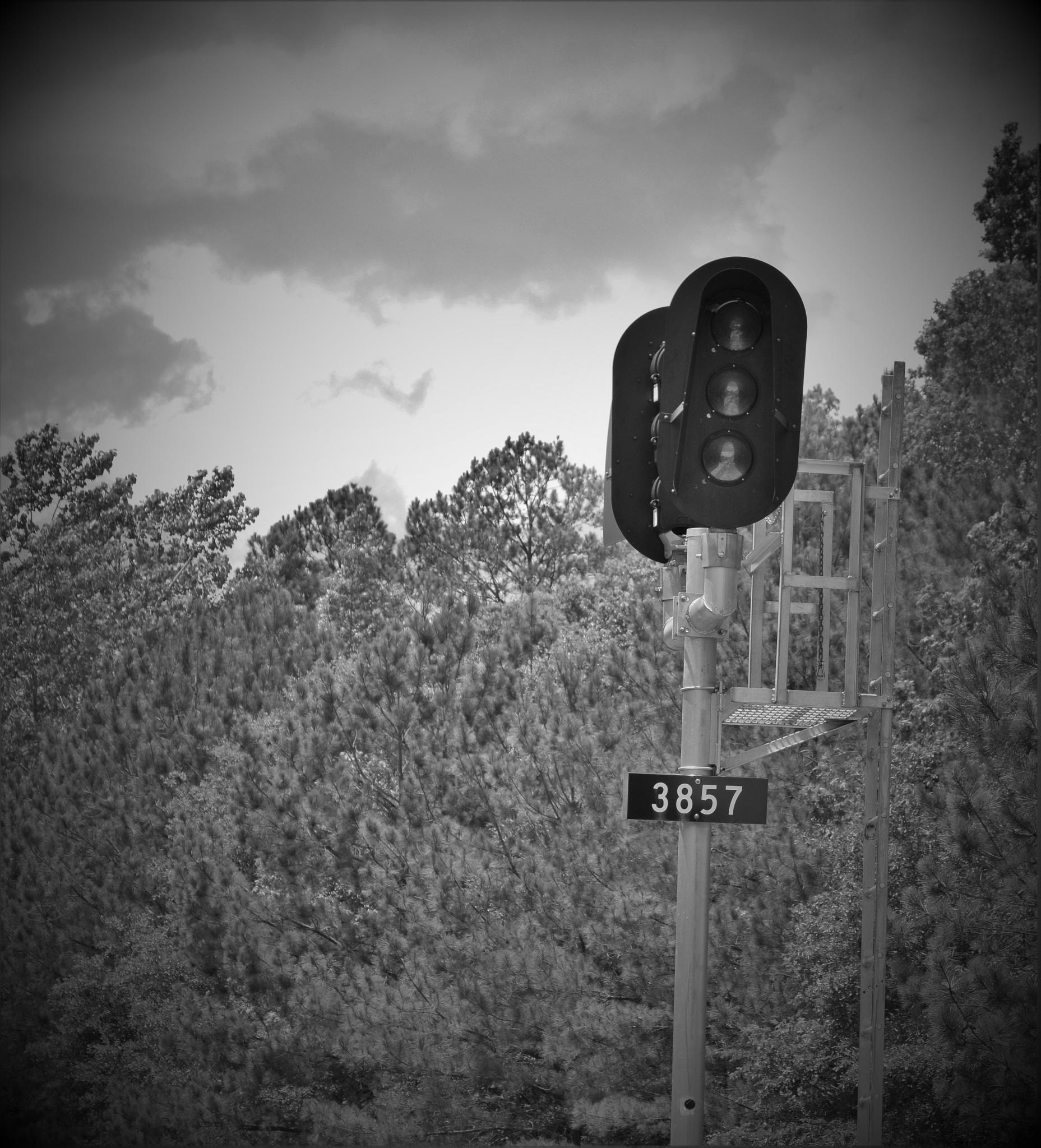Photo in Black and White #train #signal #tracks #sumter #south carolina