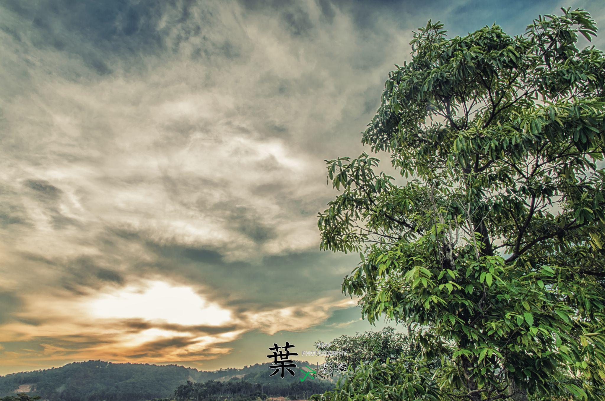 Untitled by Chun Siang Yeap