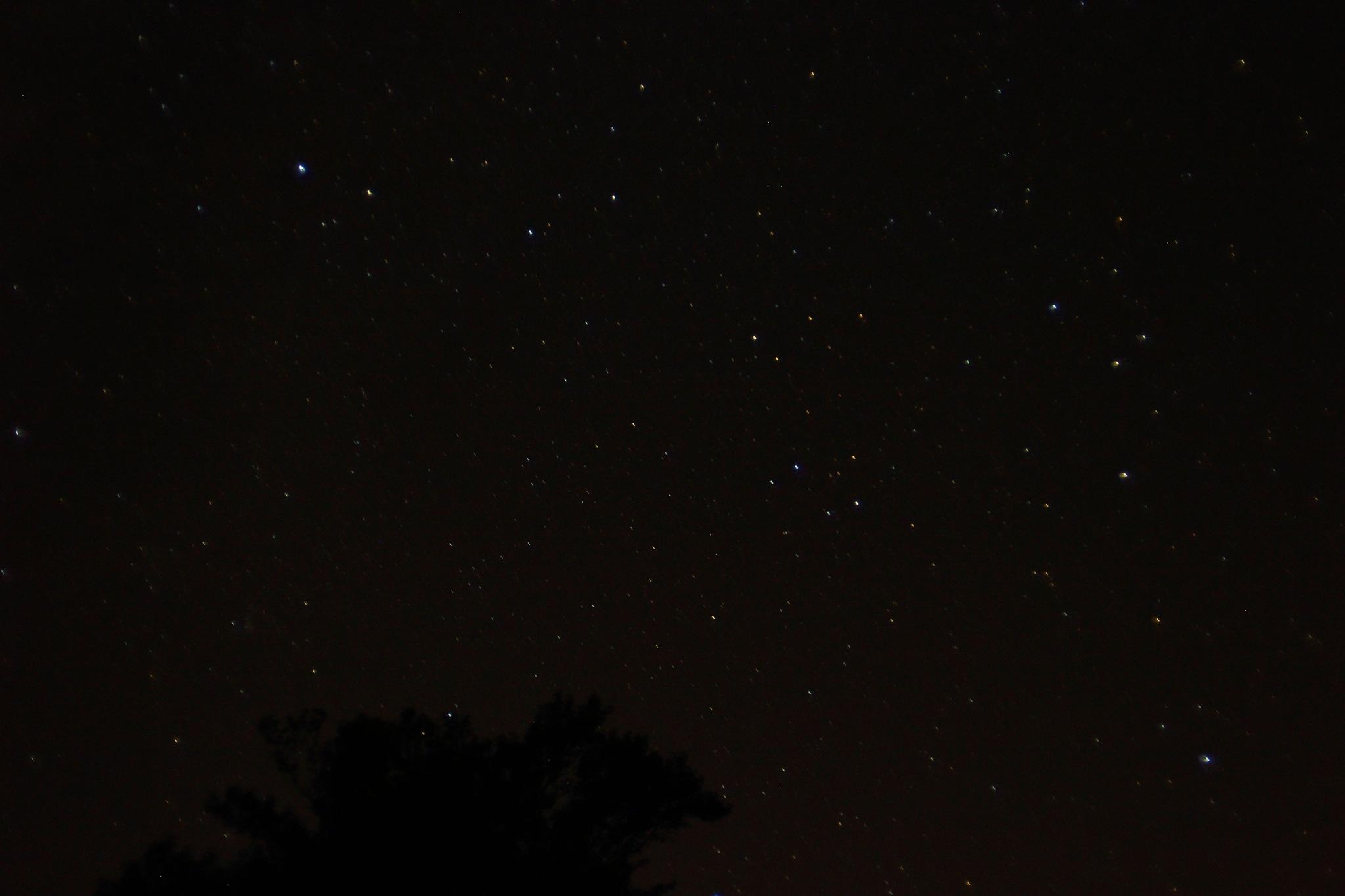 Perseid Meteor Shower by jdwines