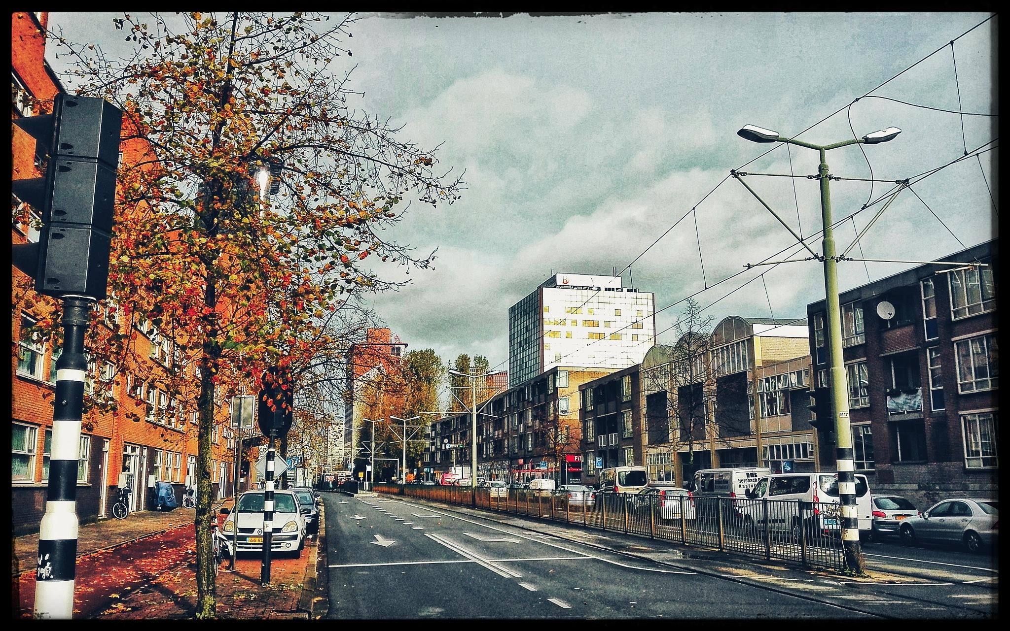 Streetview Den Haag by Heidi van Dijk