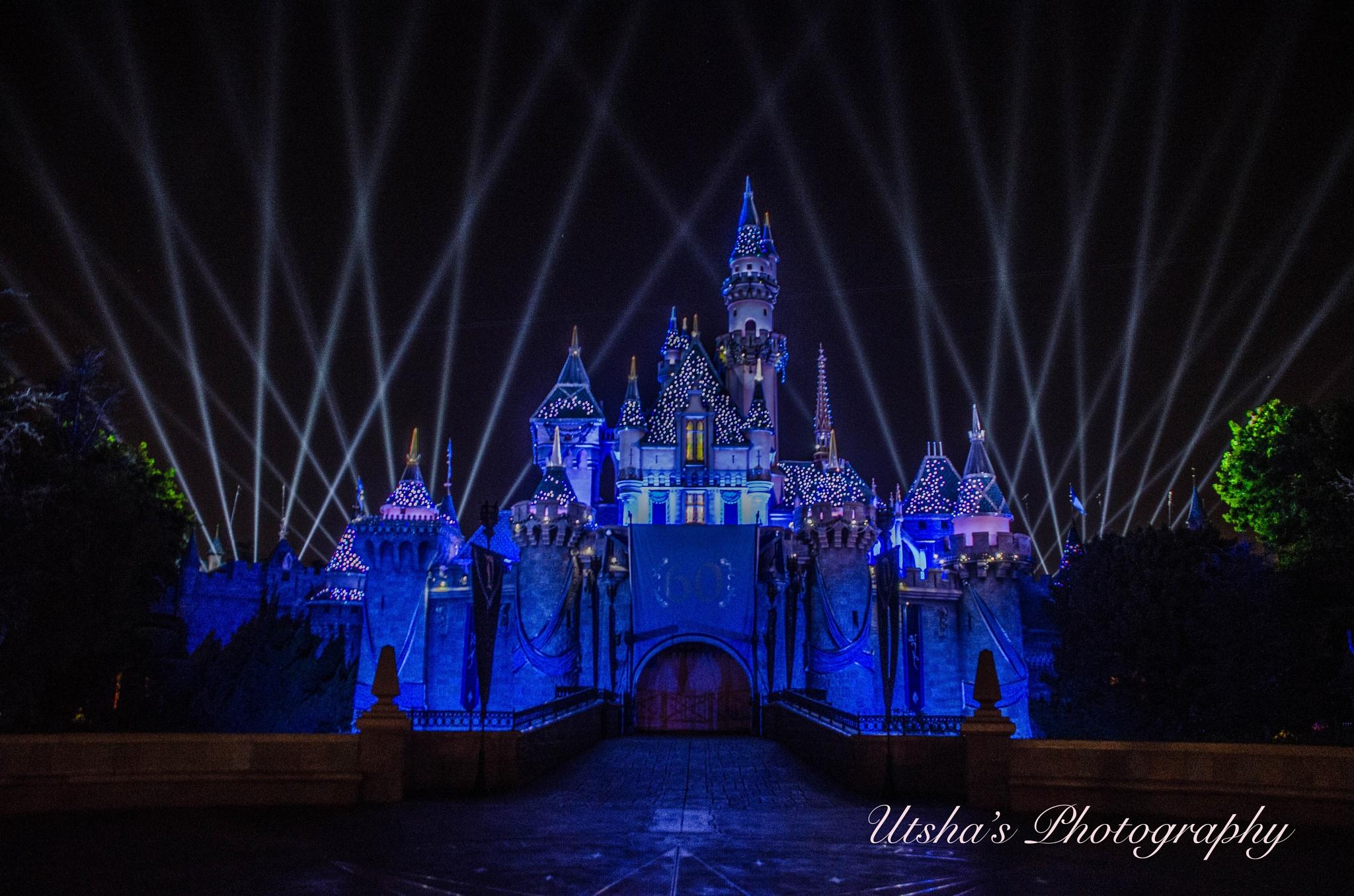 Disneyland Castle by Utsha Guha