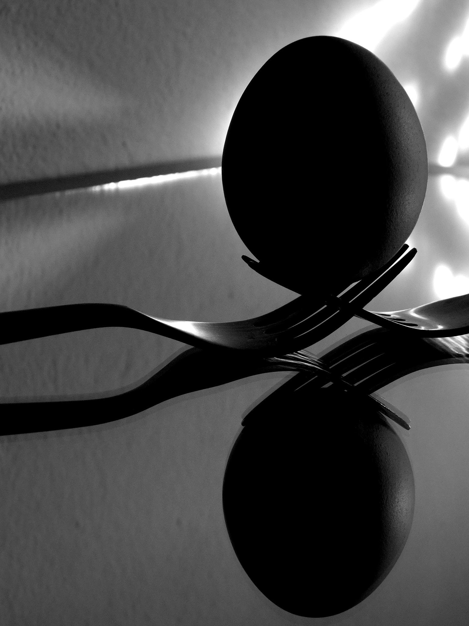 .. forks&egg VI ..  by goga22