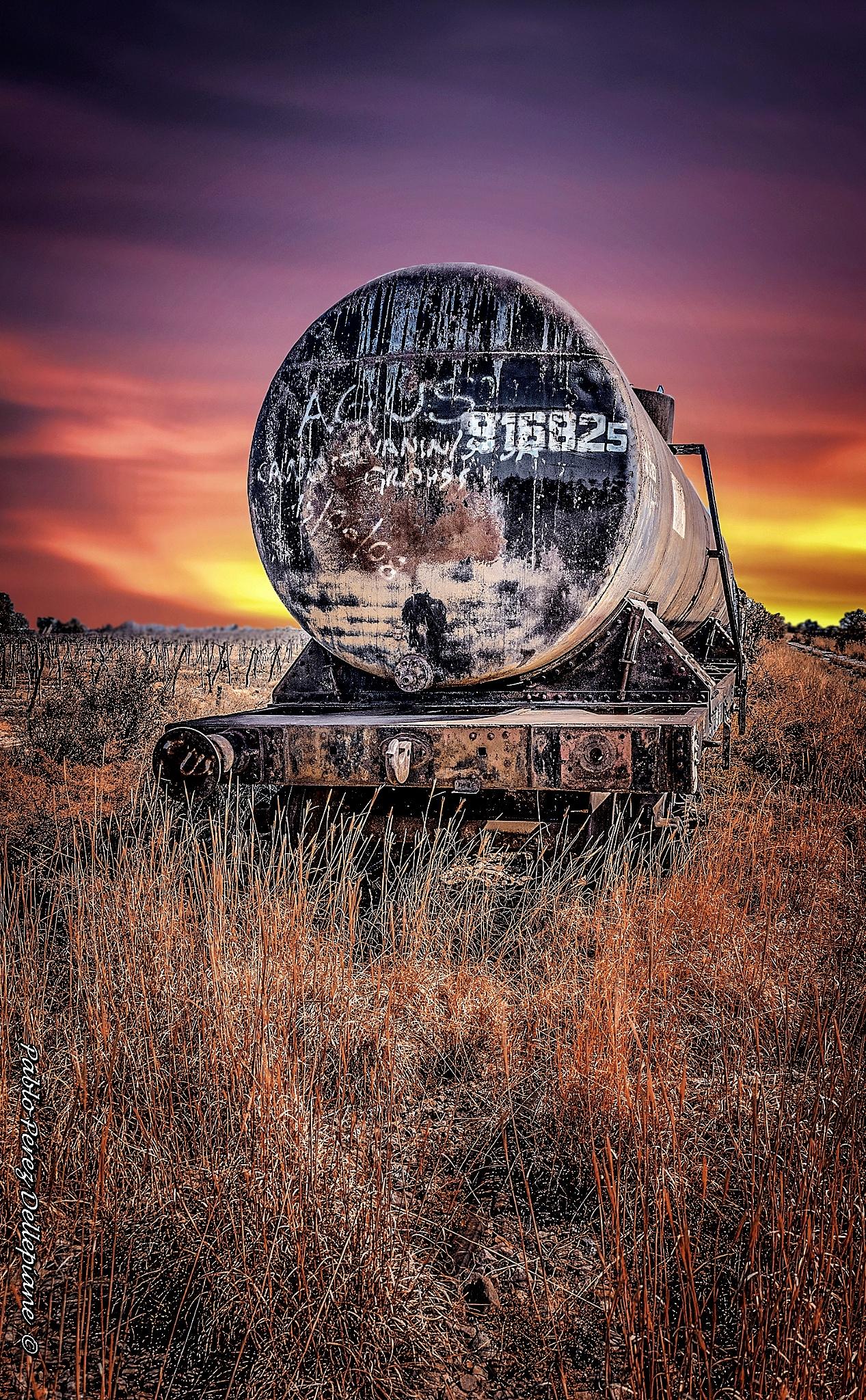 Tren by PabloPerezDellepiane