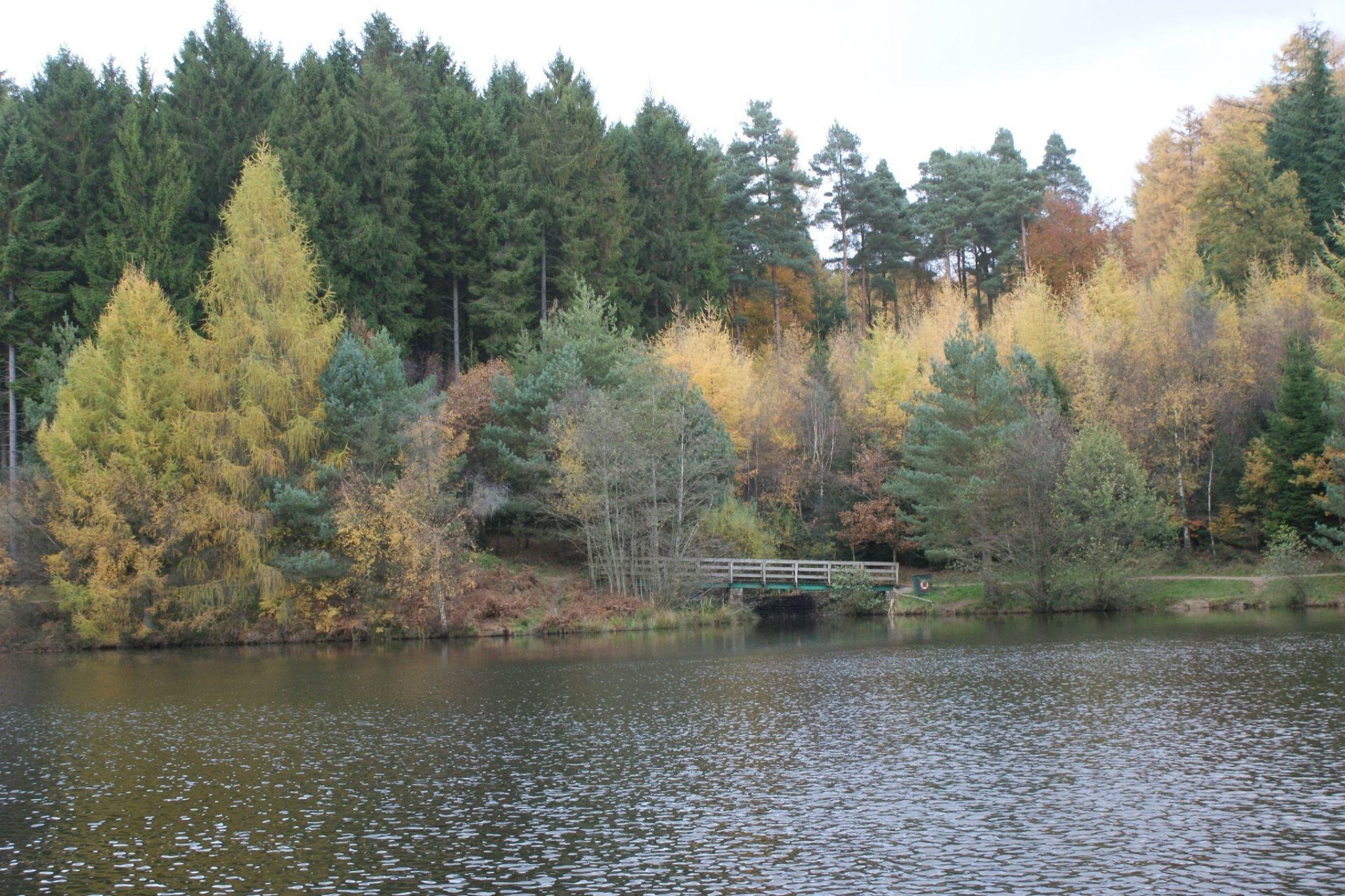 Lakeside by IanBishop