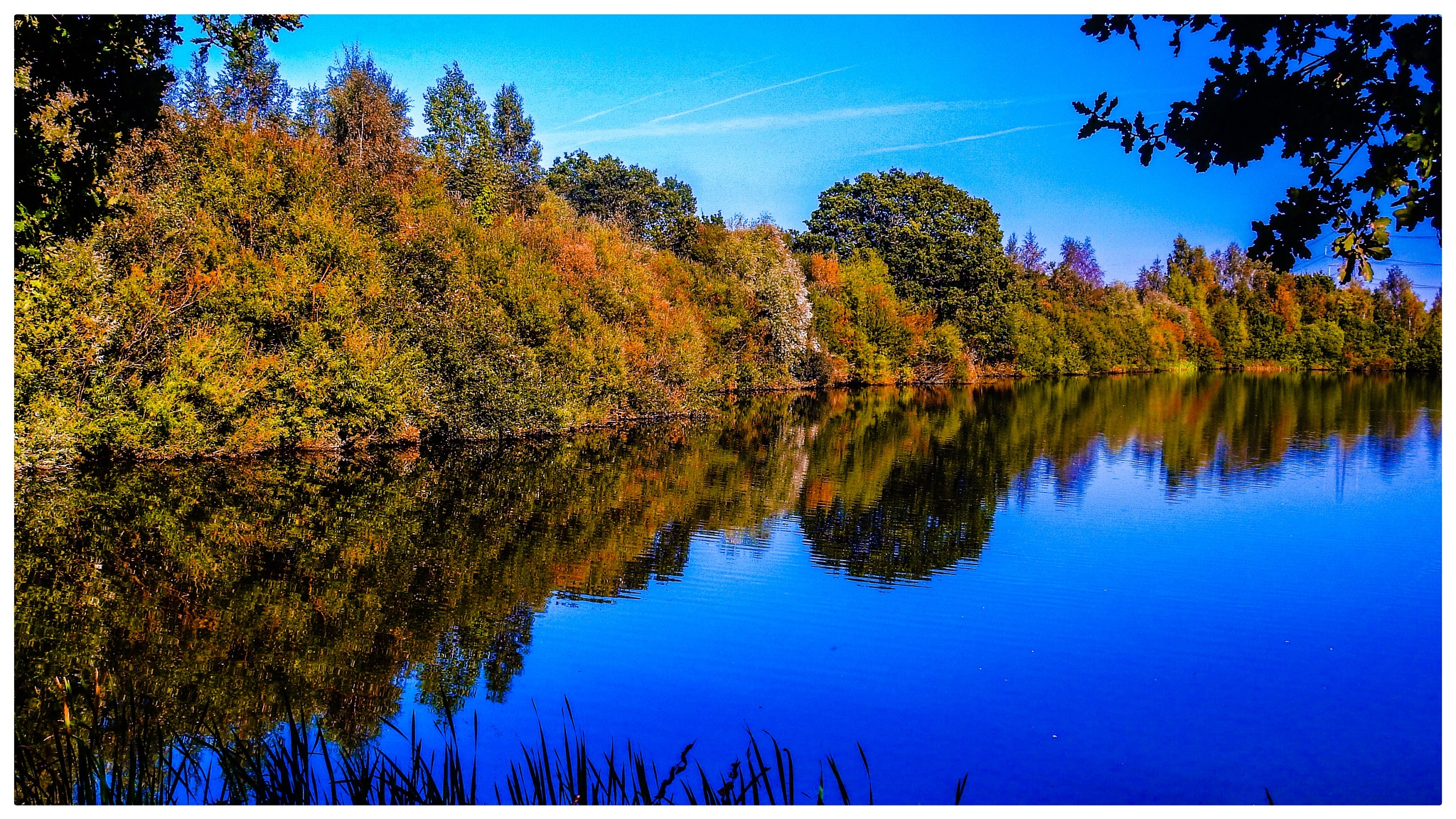 Autumn colour reflections  by Alvin York