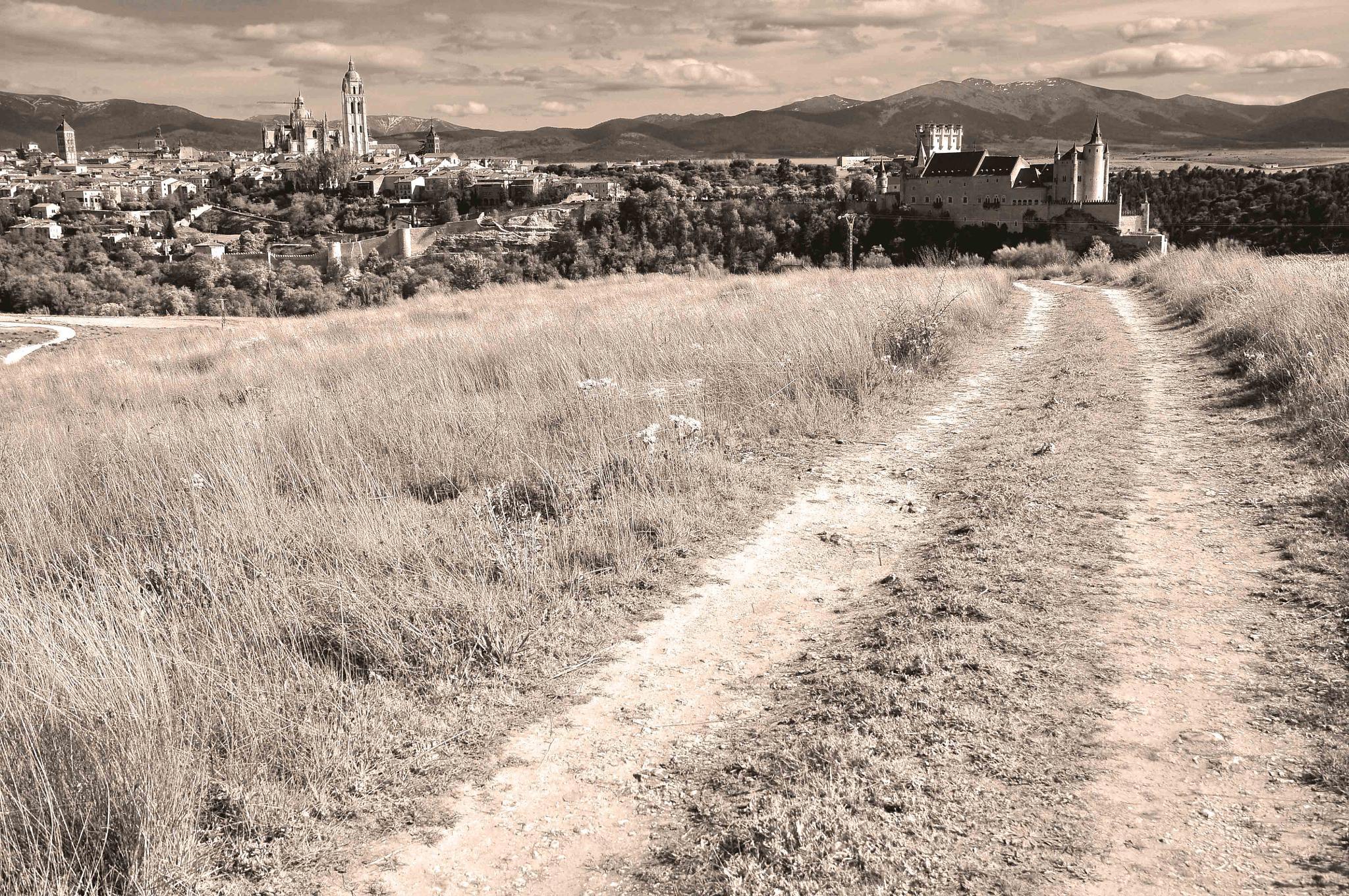 Camino by Arturo Fernández