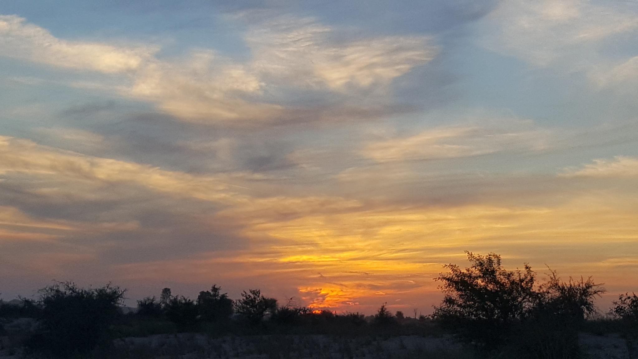 Sunset at Al qudra lakes taken with Samsung Galaxy S6 edge plus  by shyambhagra