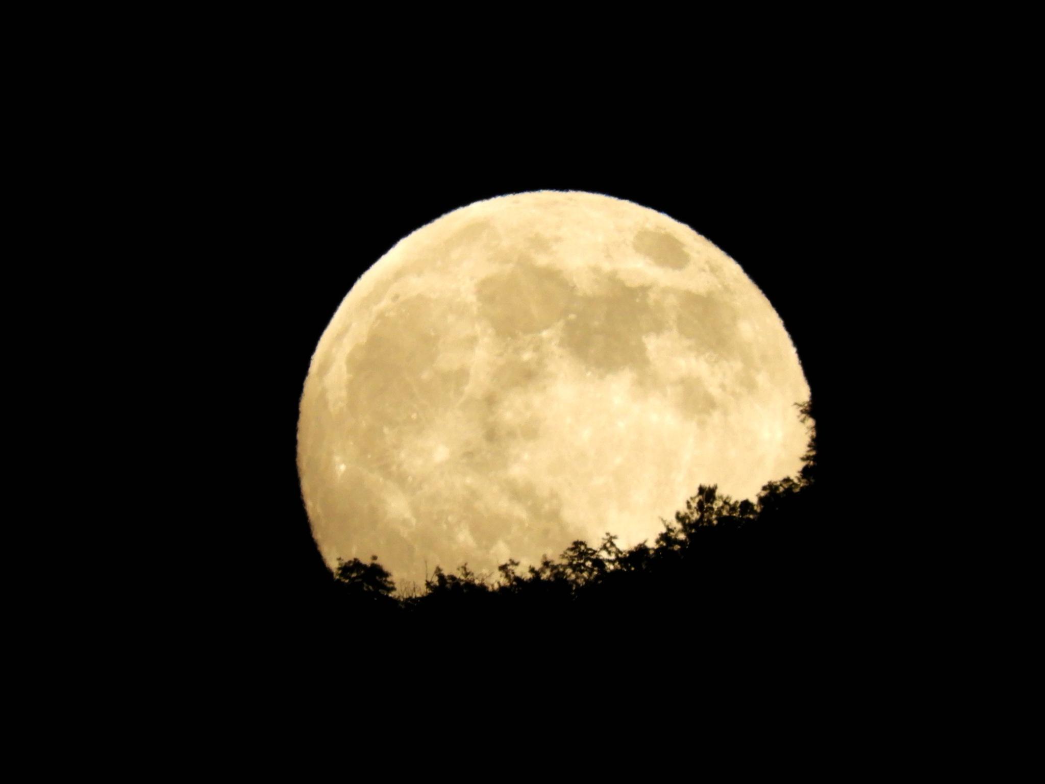 spunta la luna dal monte 2 by Piergiorgio Martini