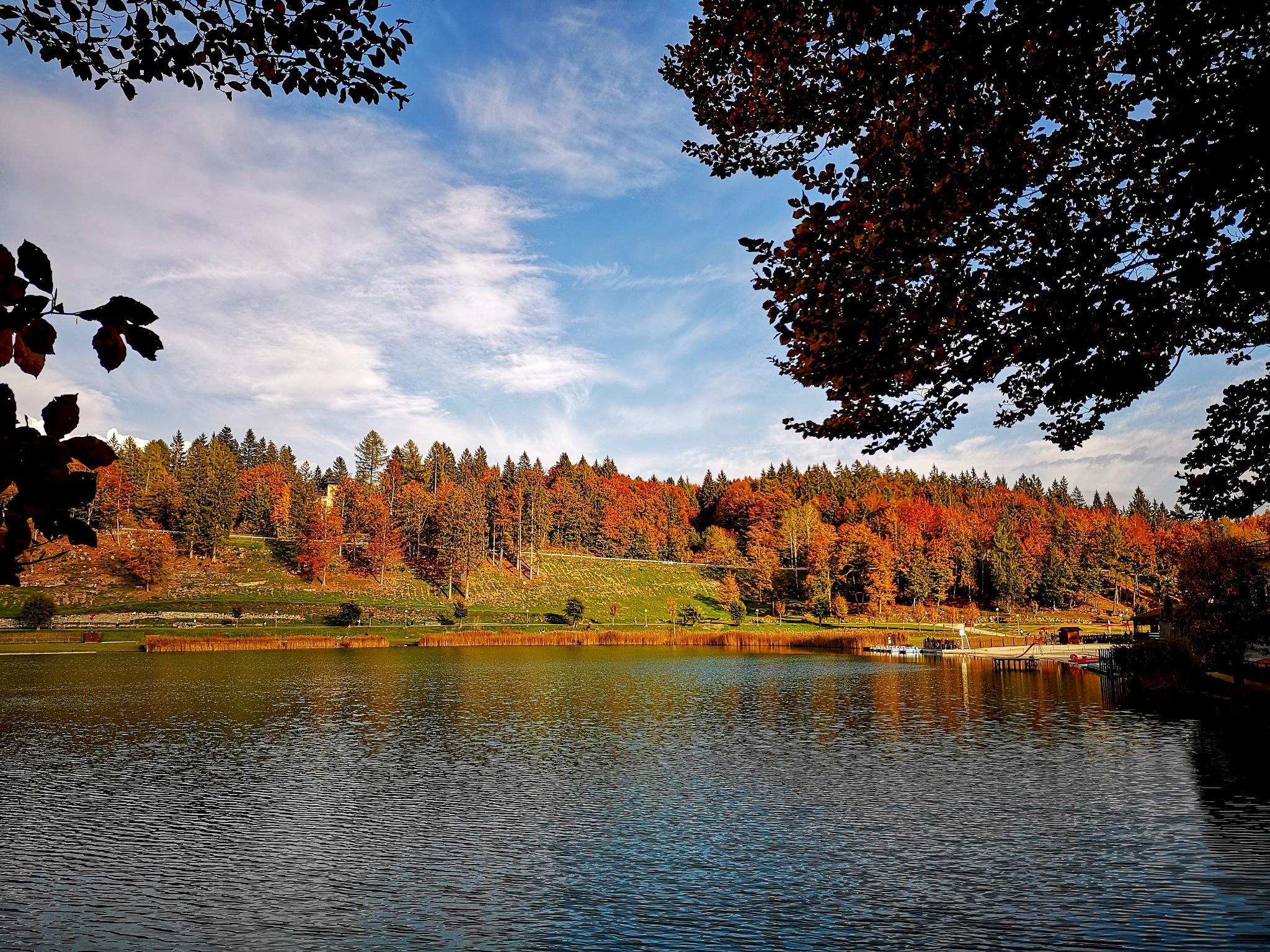 colori d'autunno  by Piergiorgio Martini