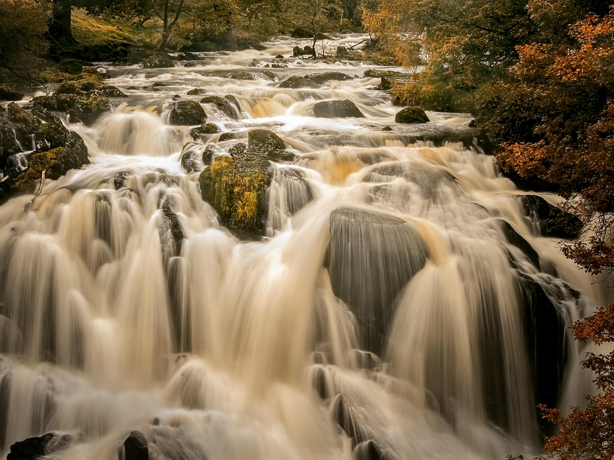 Swallow Falls by Jim Palfrey
