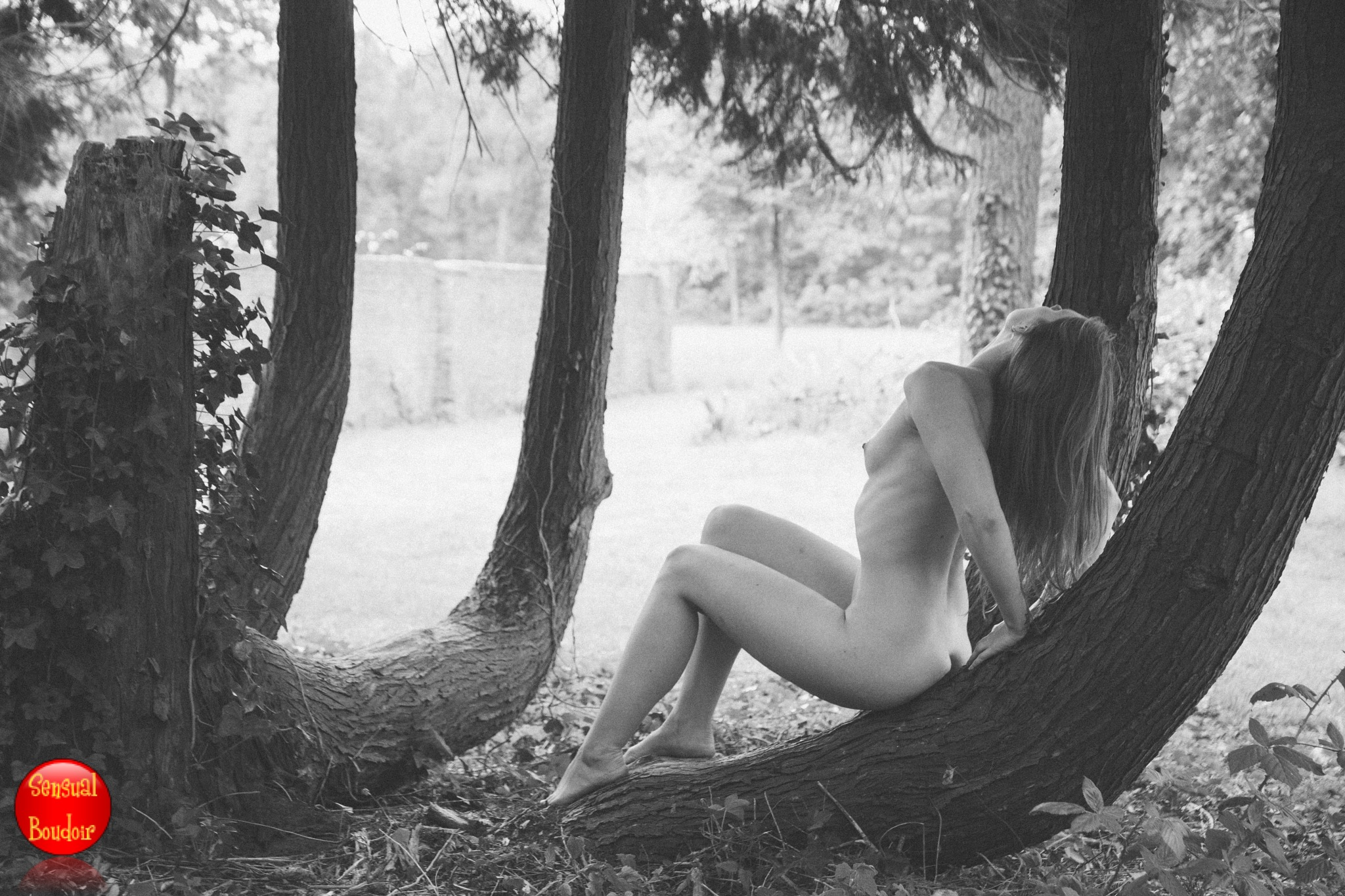 Nude by a tree by Sensual and Boudoir