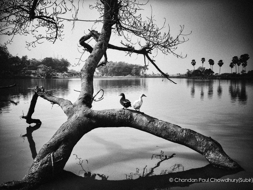 YOU & ME by Chandan Paul Chowdhury
