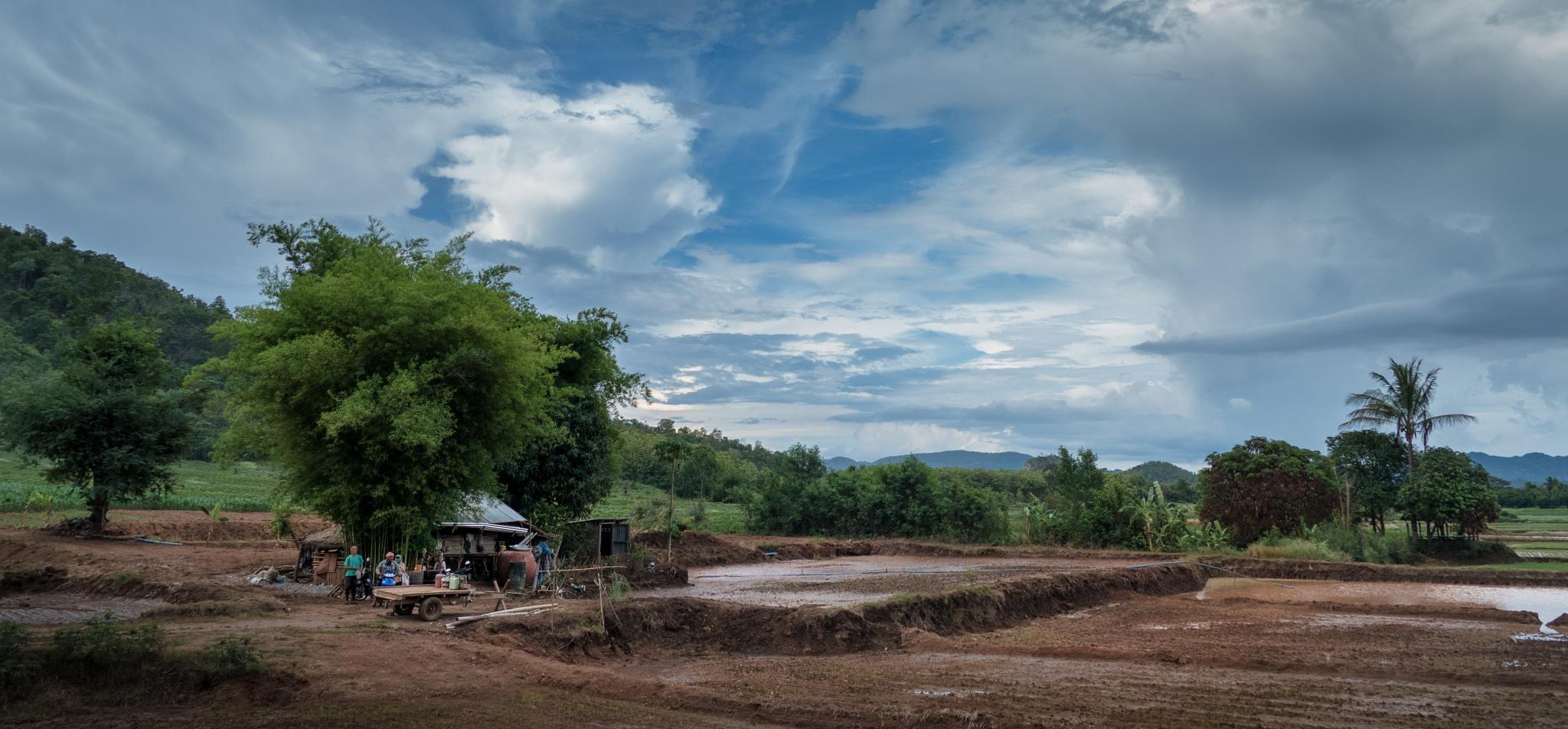 Preparing the rice fields by steve56