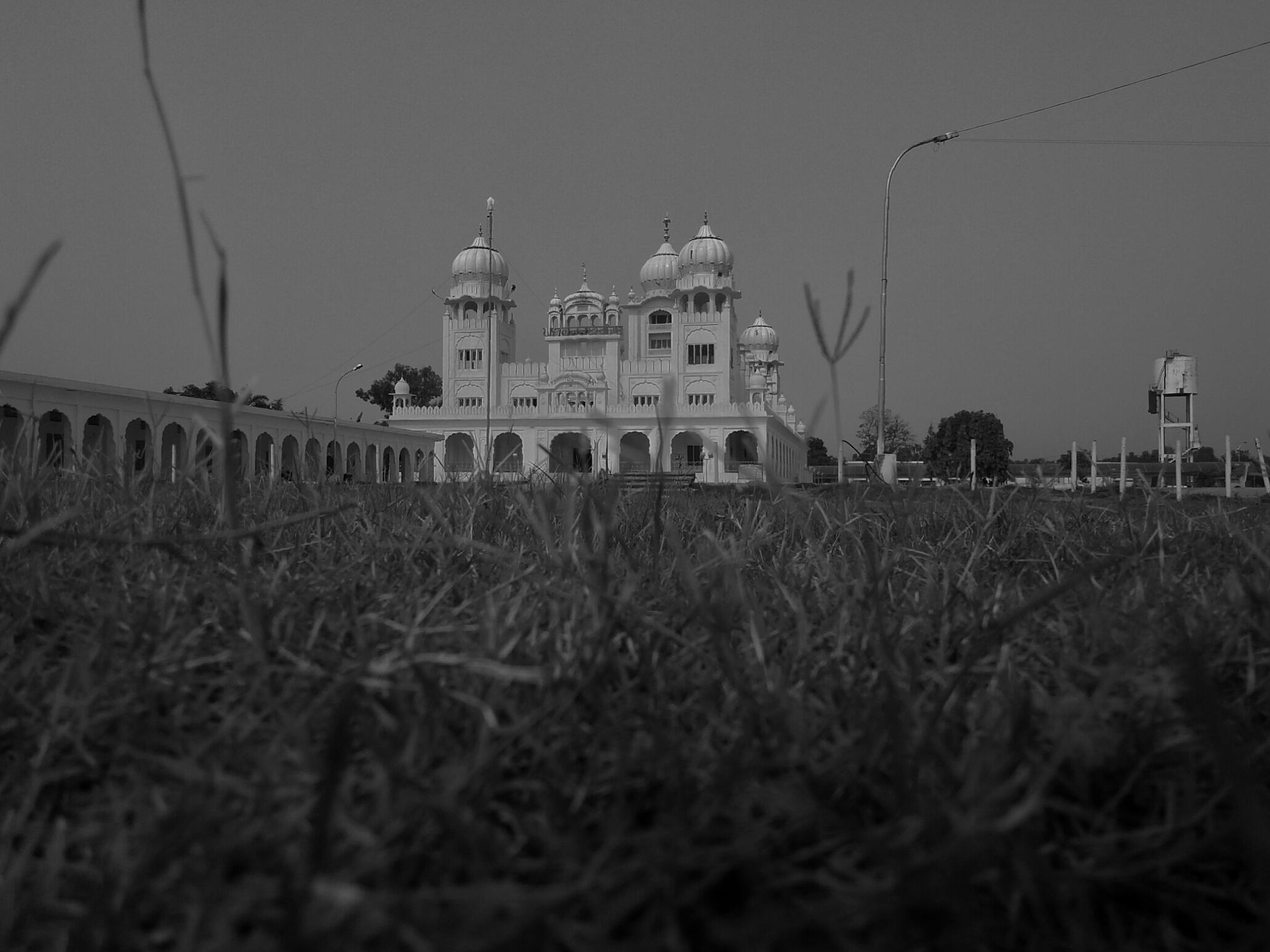High by BalrajSingh