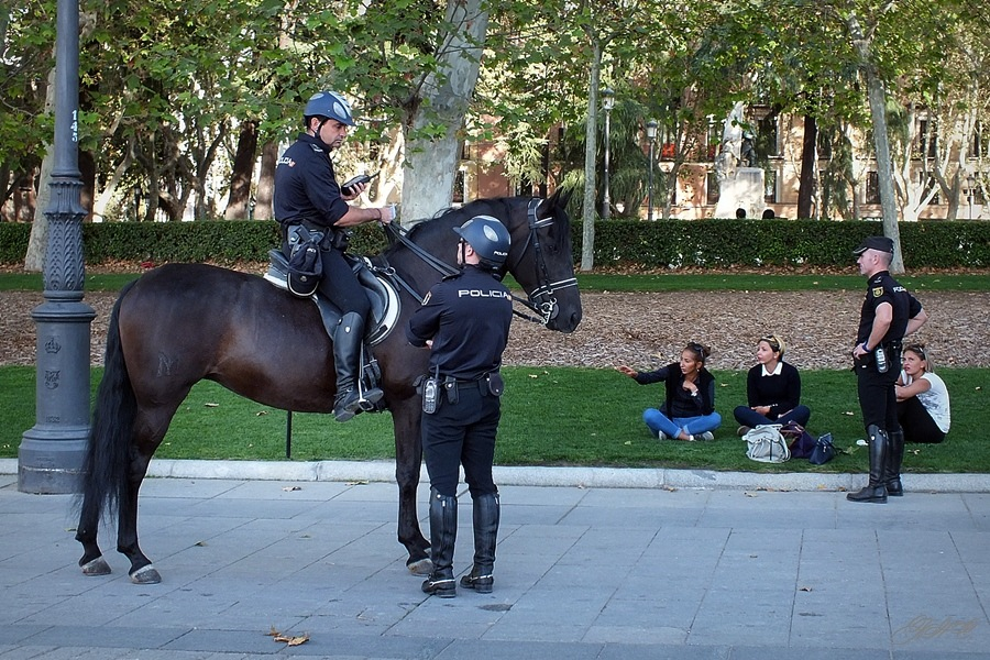 Mounted police of Madrid by Natali2pf