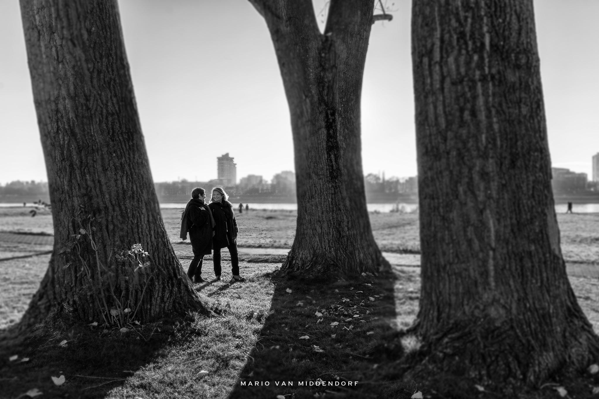 Girlfriends by Mario van Middendorf