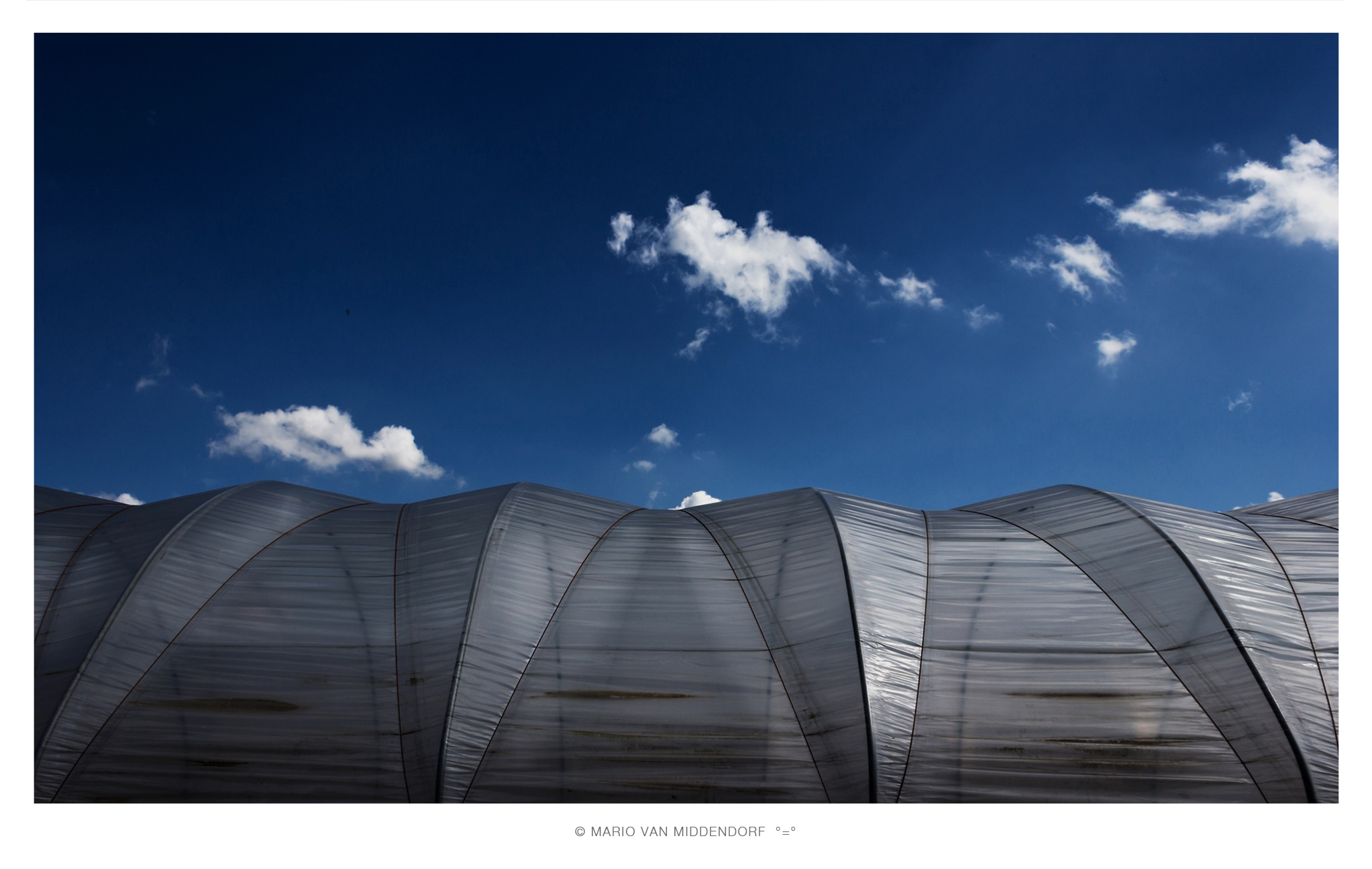 incubator [02] by Mario van Middendorf