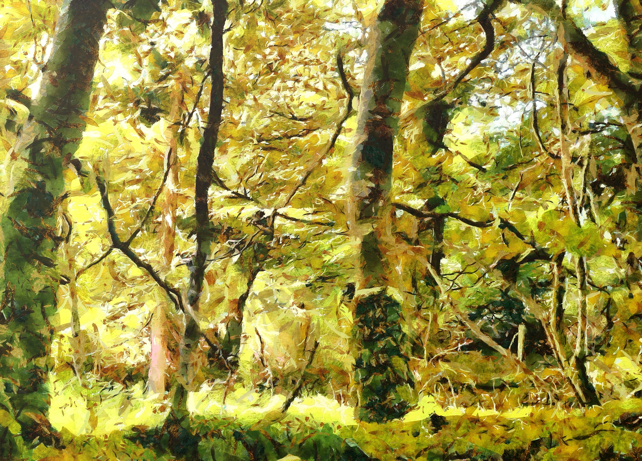 Photo in Landscape #devon #landscape #trees #woodland #tree #nature #relaxing #peaceful #painting
