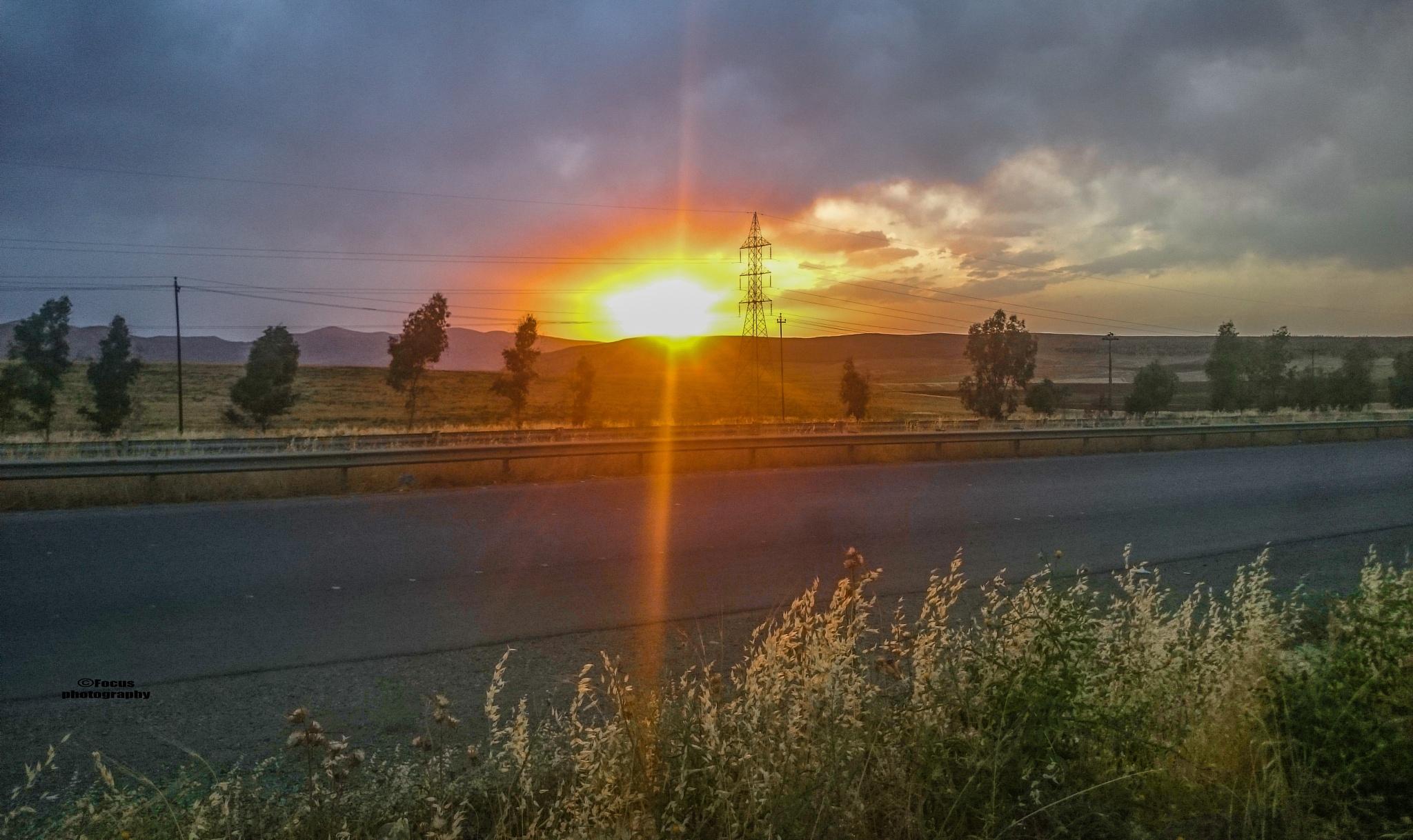 sun out of the soil by farman_focus