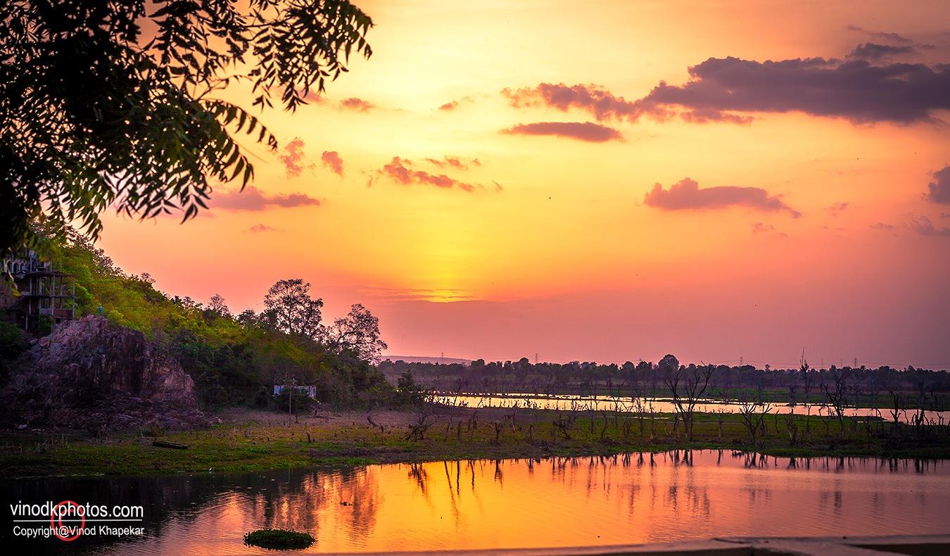 Golden Evening by Vinod Khapekar
