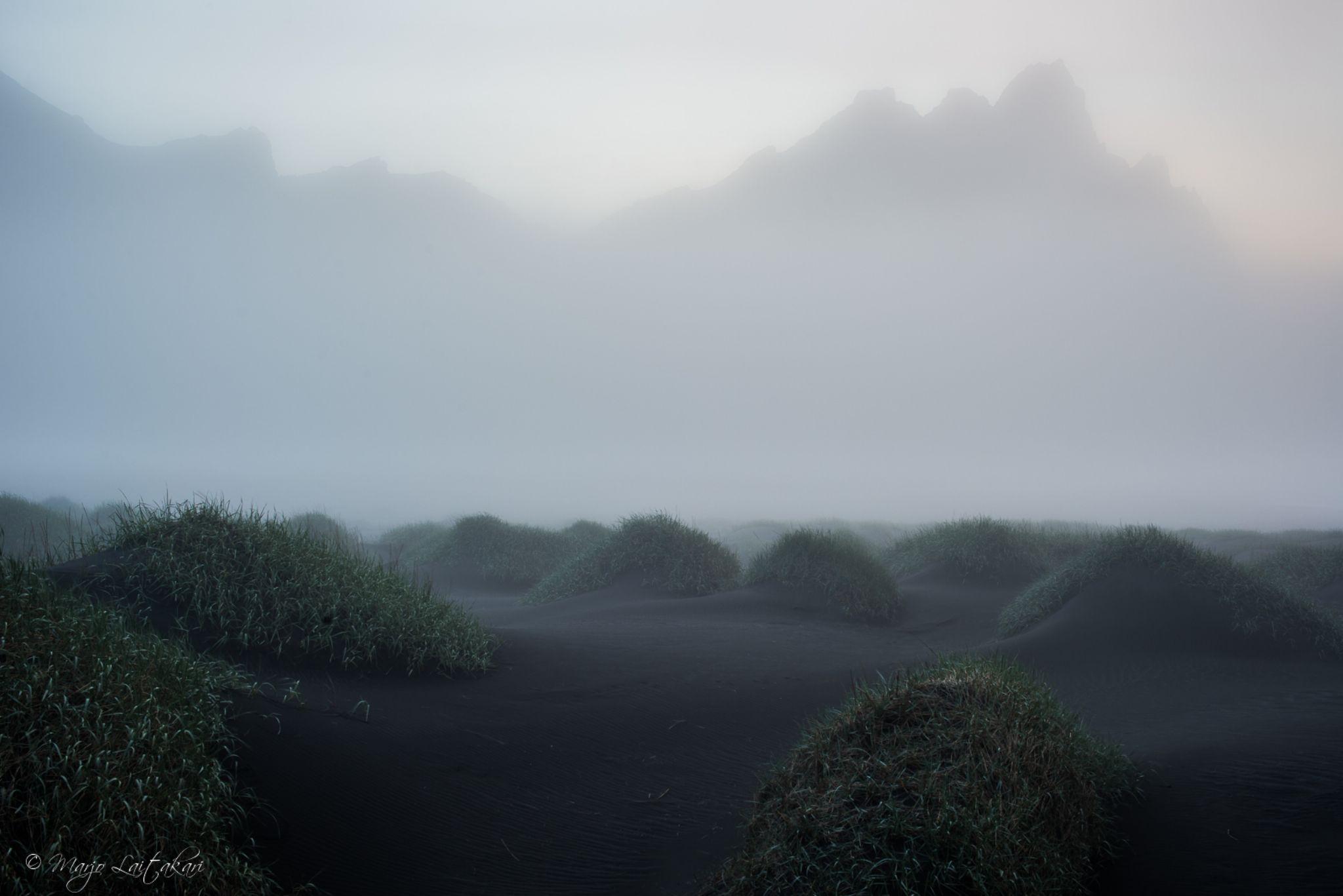 Stokksnes, Iceland by Marjo Laitakari
