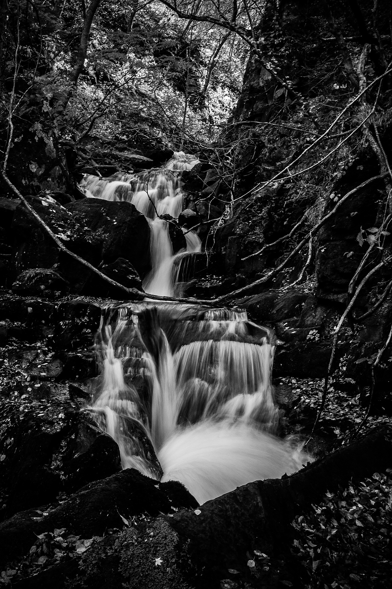 Waterfall by 啟峰 洪