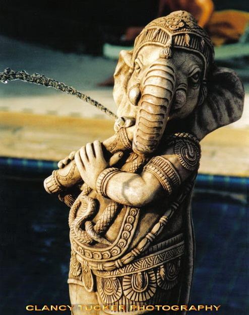 Elephant fountain by Clancy Tucker