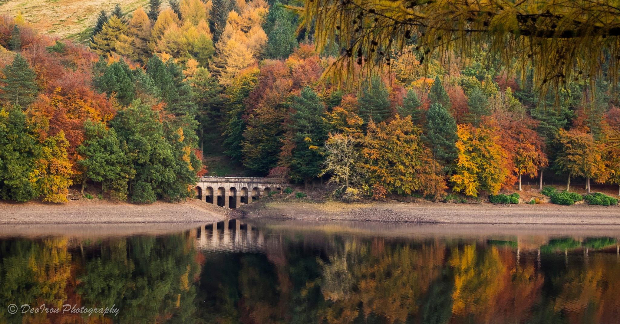 Autumn Colours... by Deoiron