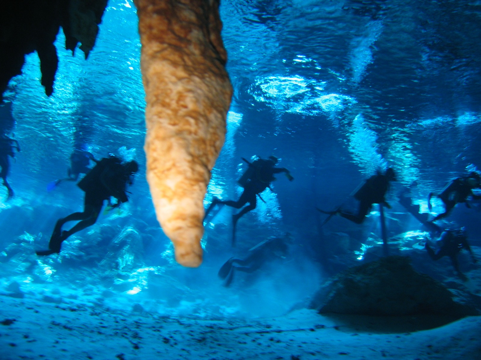 Cenote tour by Mexico mayantours