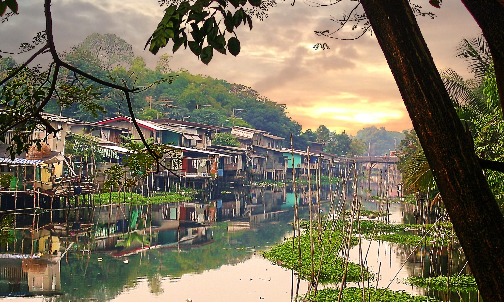 Photo in Travel #bangkok klong canal houses riv #on river stilts