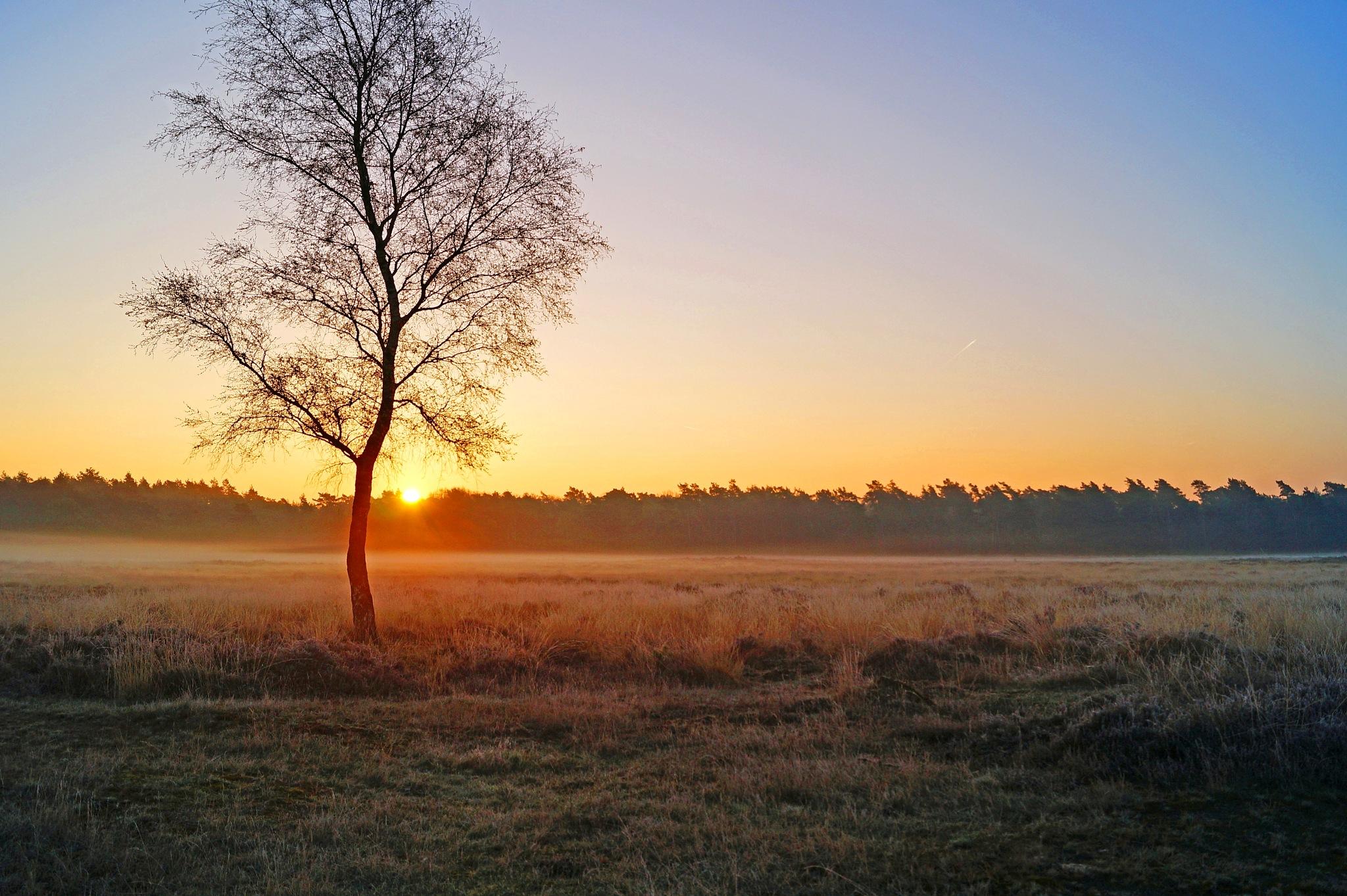 April Sunrise by Marian Baay