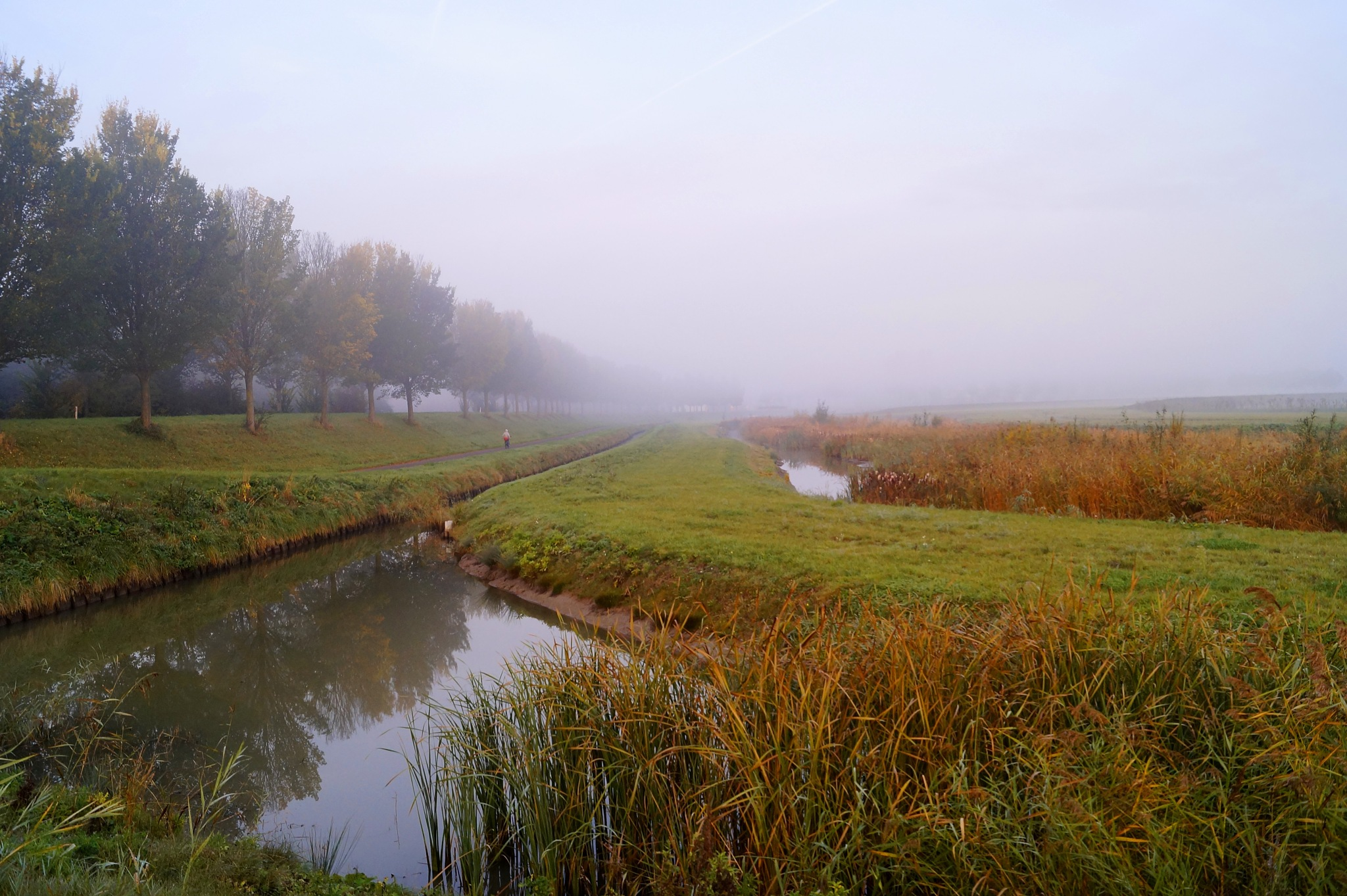 Dutch Countryside in the Mist by Marian Baay