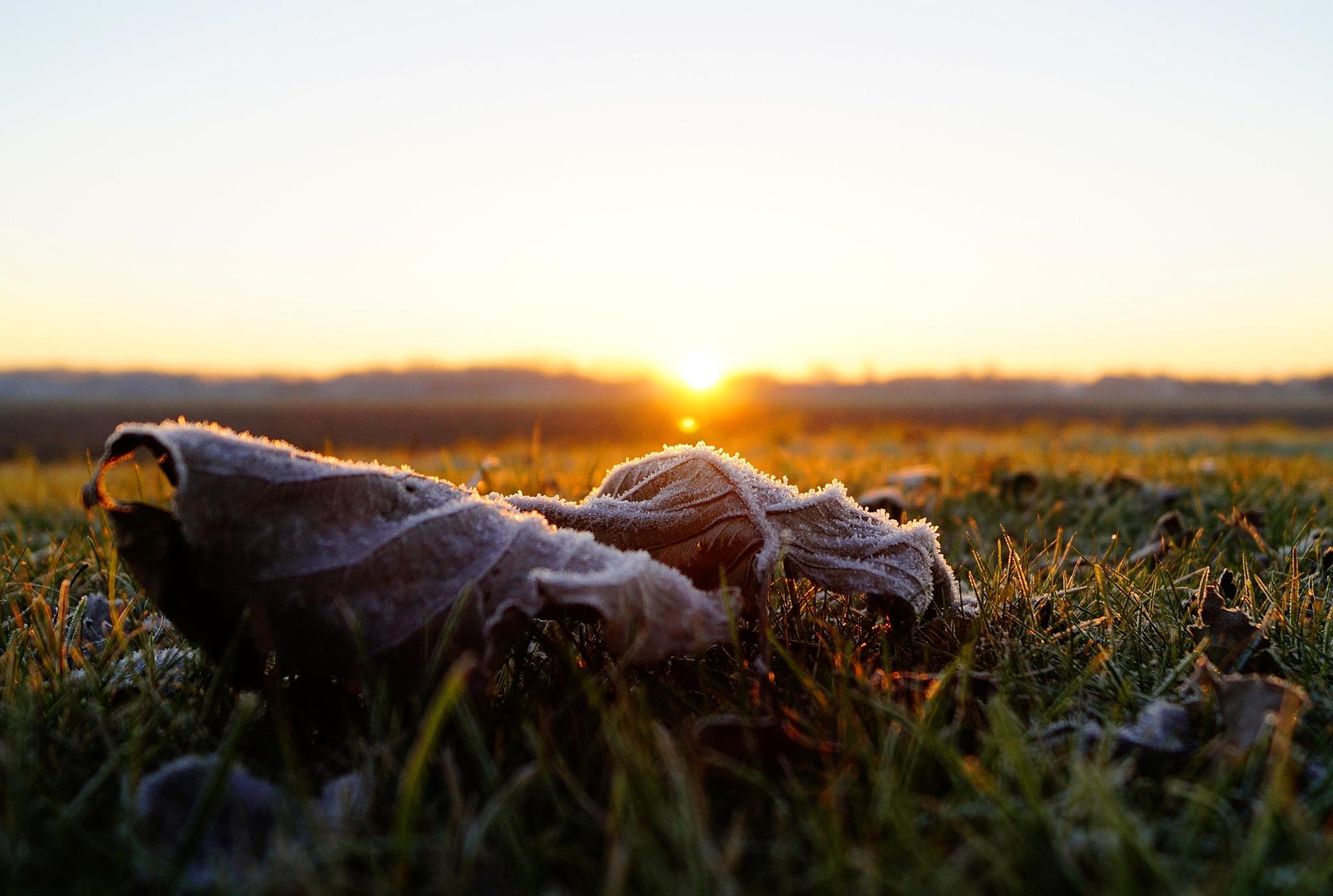 Frosty Sunrise by Marian Baay