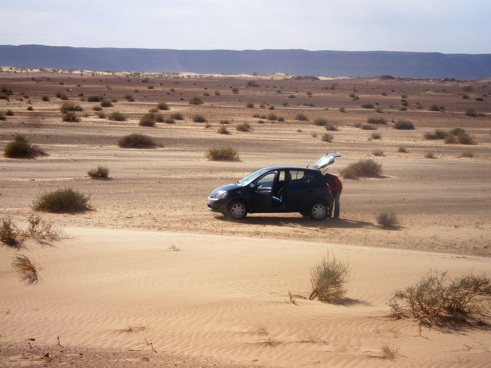 Photo in Travel #taghit #saoura #sahara #desert #algeria #algerie