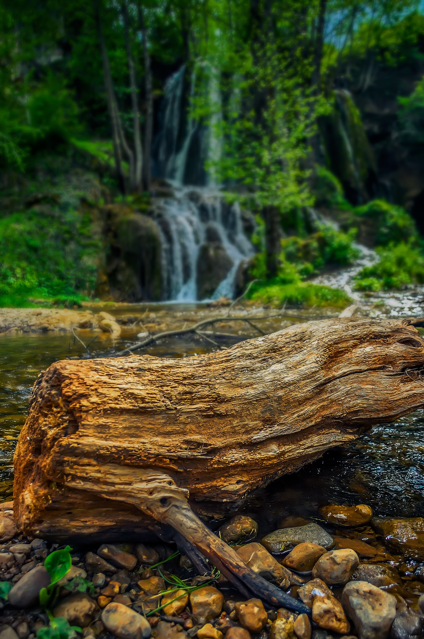 Waterfall in Deep forest by Milan Markovic Foto