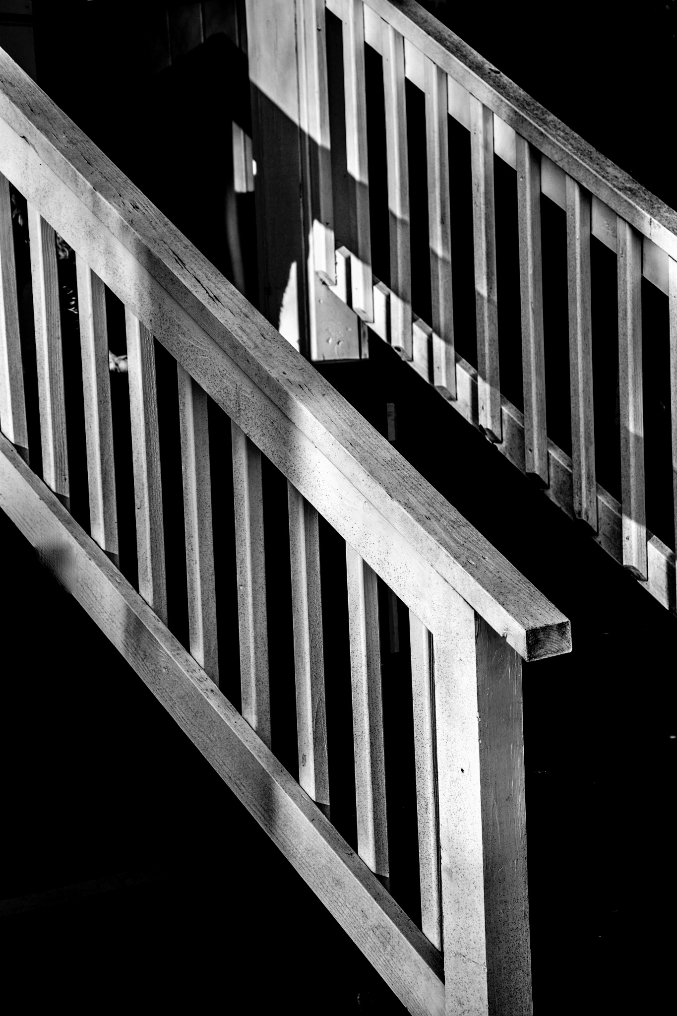 Banisters by danphares