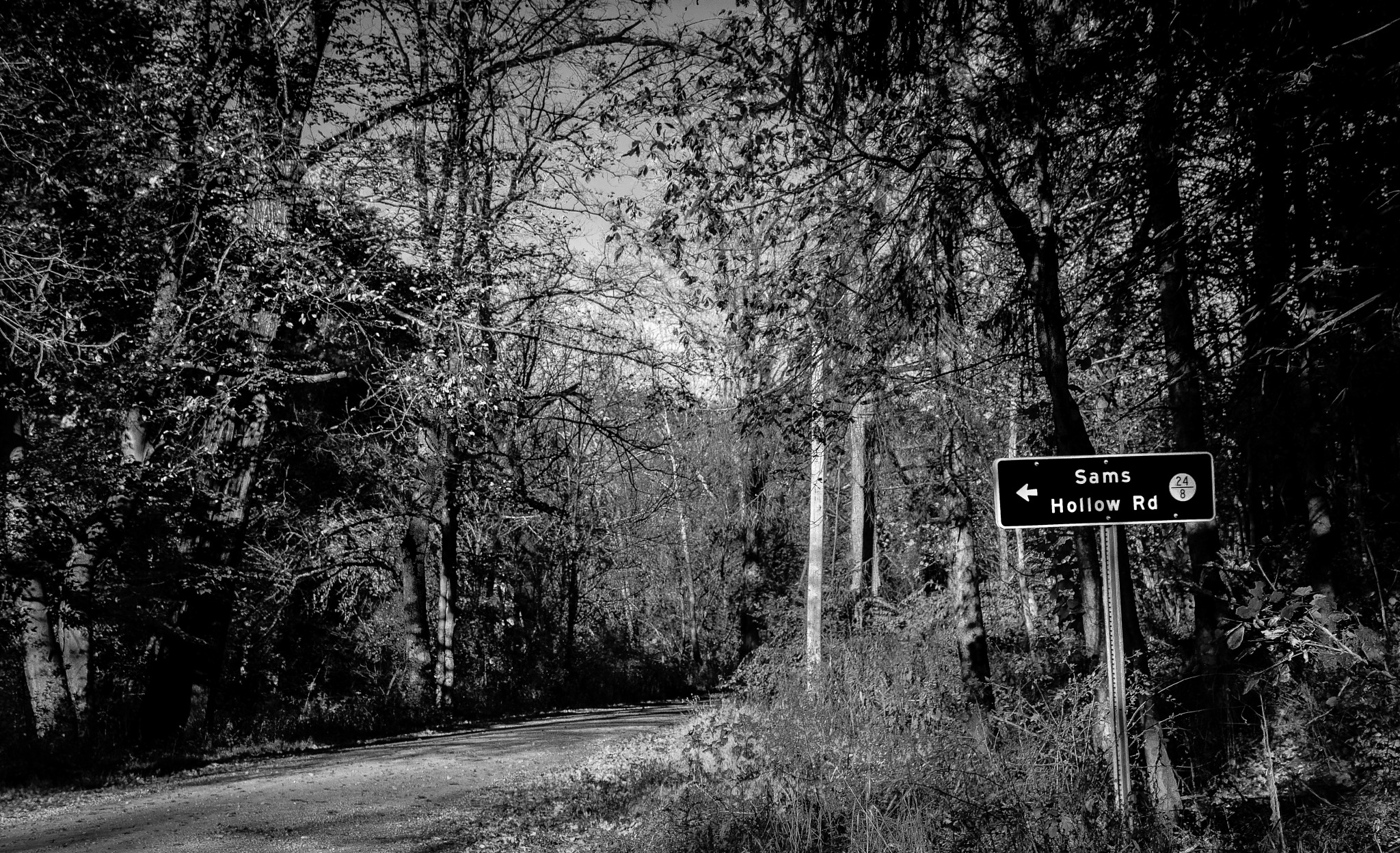 Sams Hollow Road by danphares
