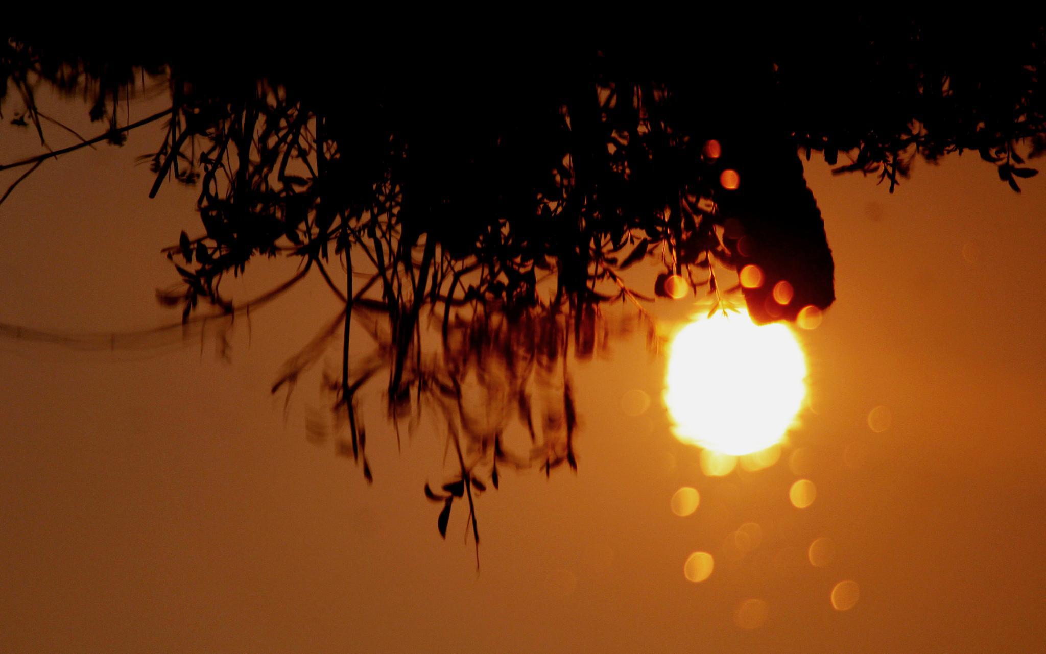Sun Reflection by Abhishek Sarkar