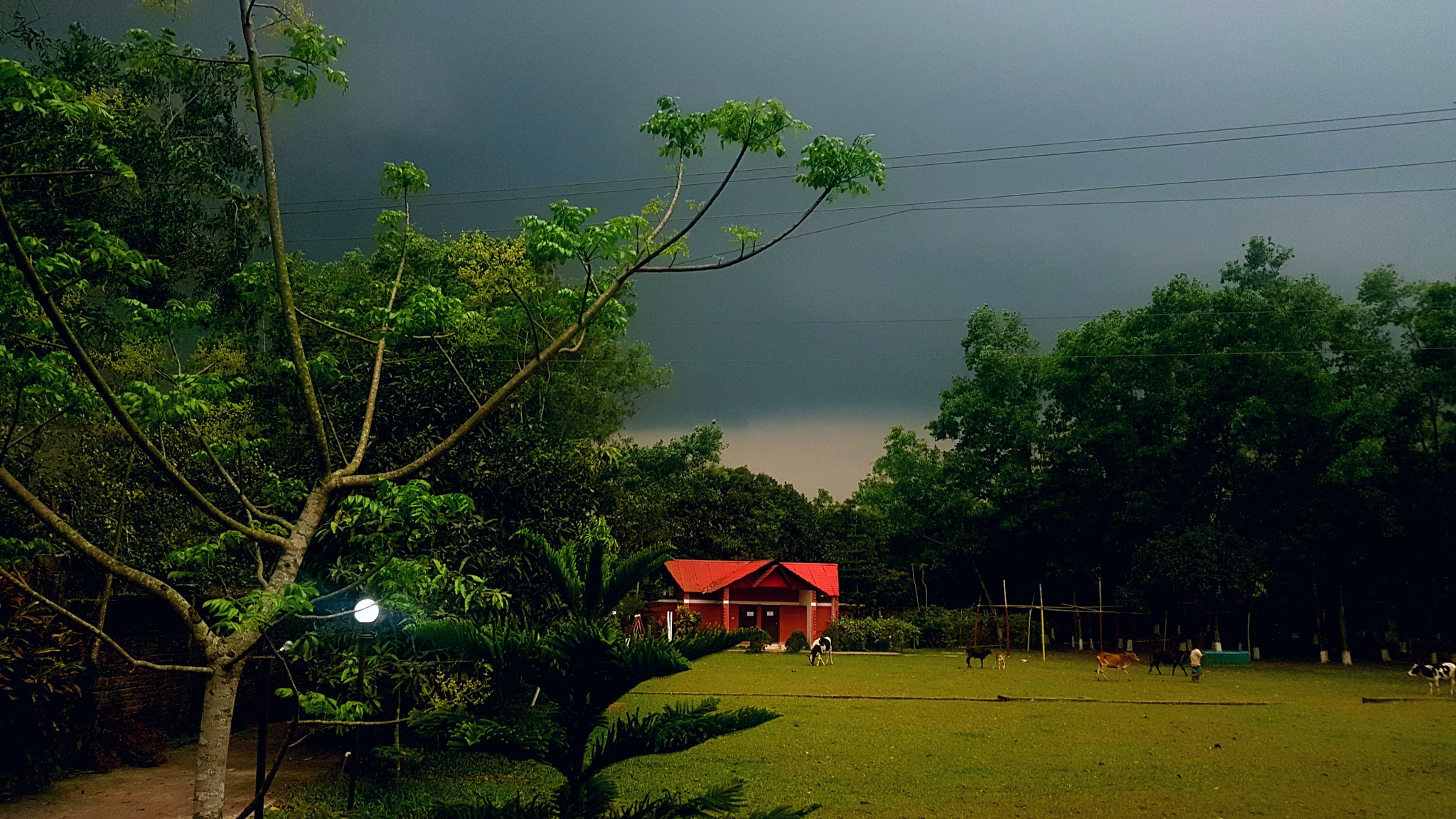 Storm coming  by Md Golam Murshed