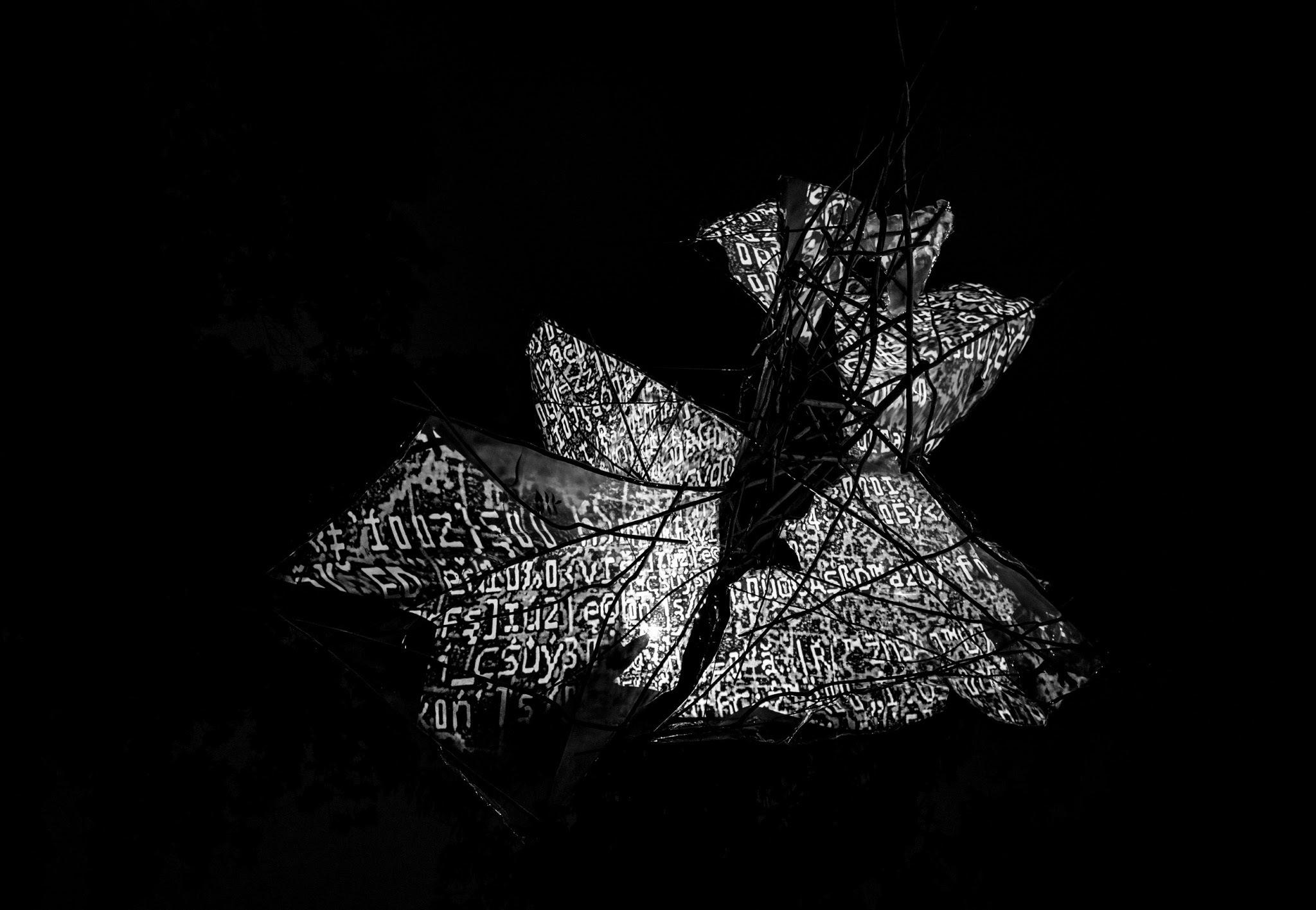 Light by Svatopluk